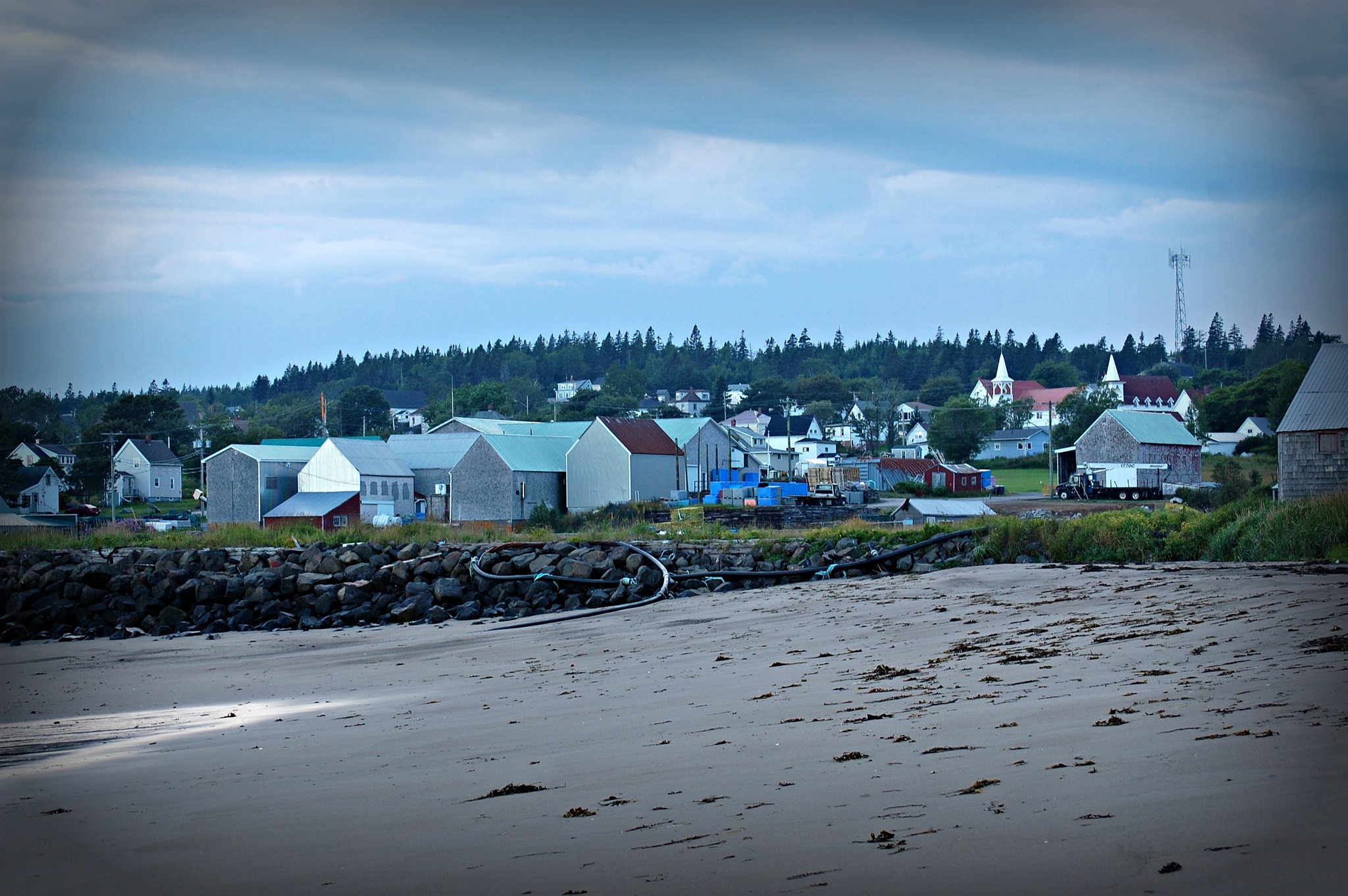 Seal's Cove Beach by Giggles79
