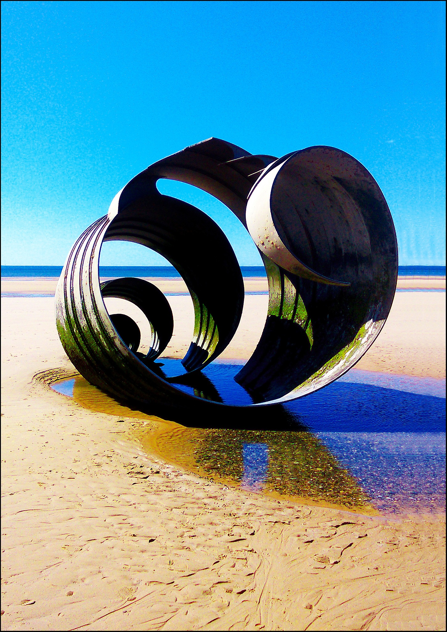 Sea Shell by TOZ