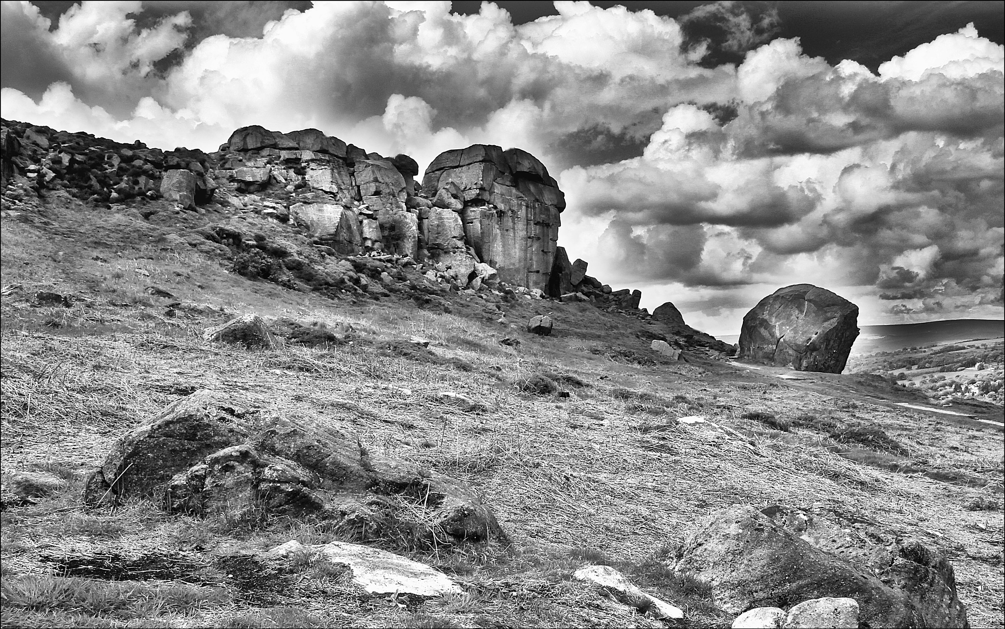 Cow and Calf by TOZ