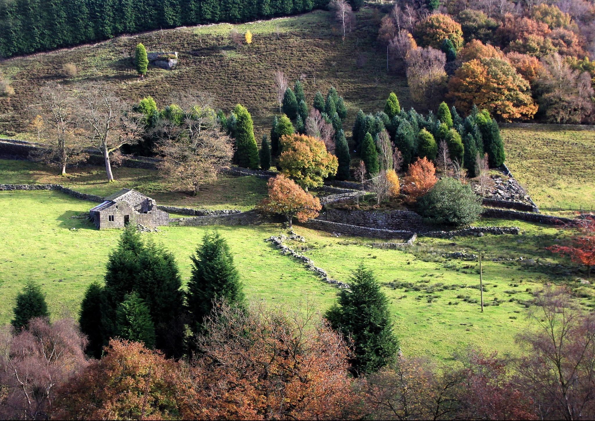 Autumn Barn by TOZ
