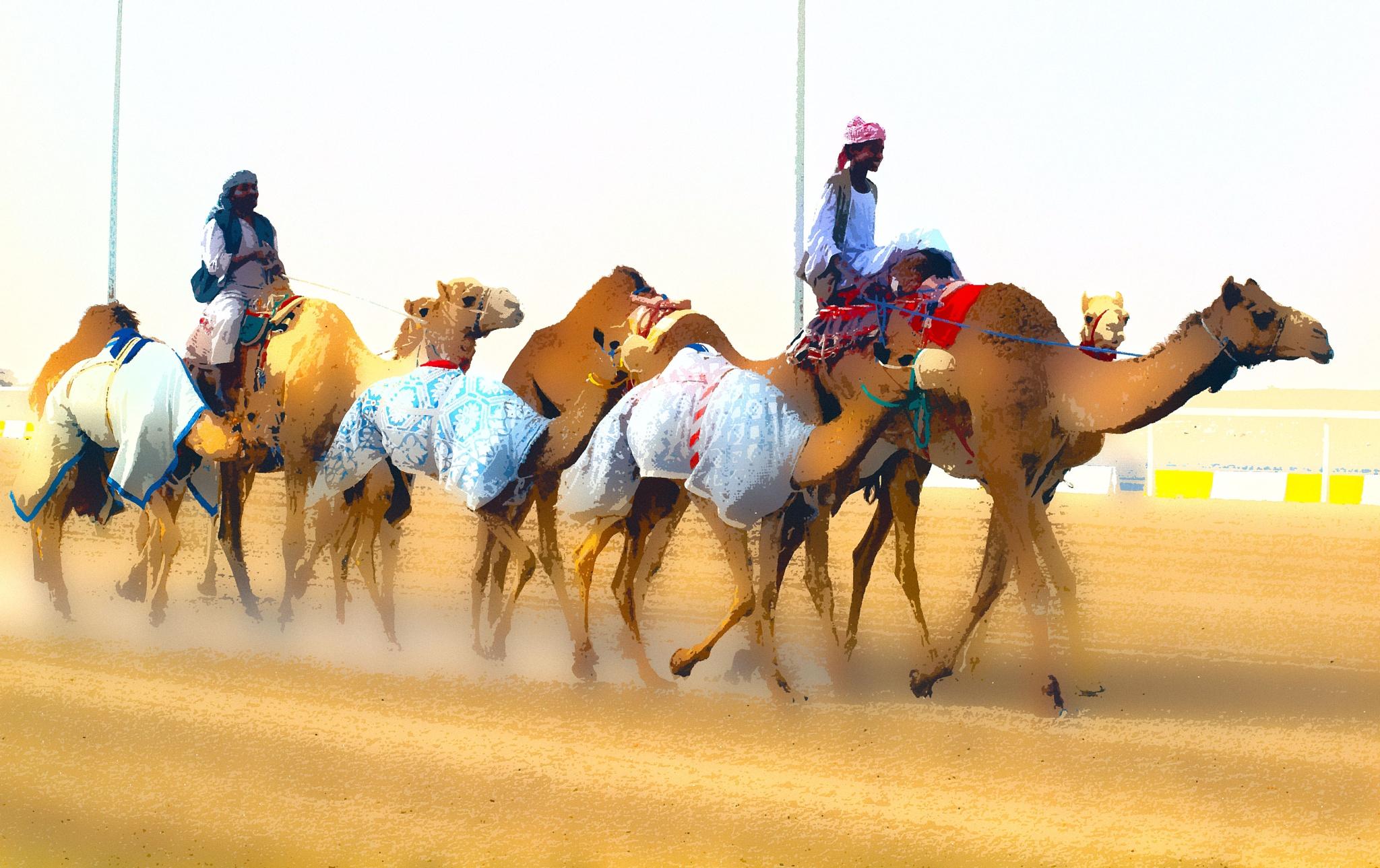 Lovely desert by Sadiq Ali AlQatari