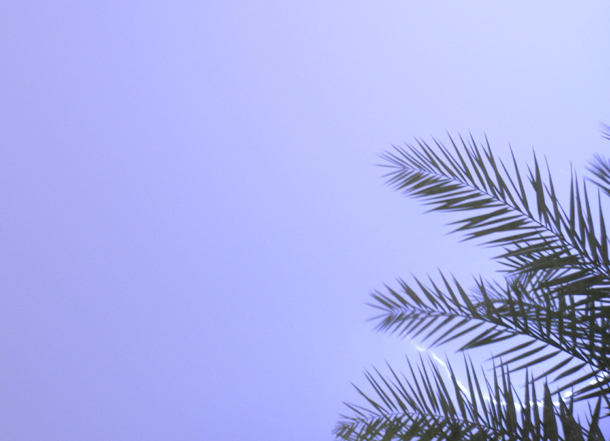 Lightening makes no sound until it strikes by Sadiq Ali AlQatari