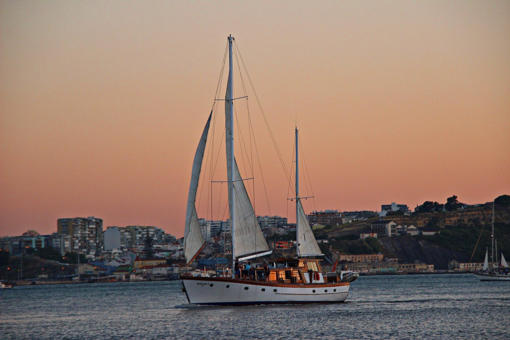River boat by Joaquim Ribeiro