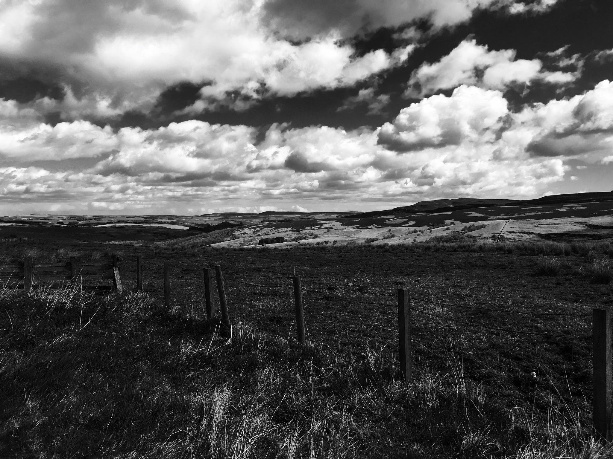 Northumberland Fields by Craig Neve