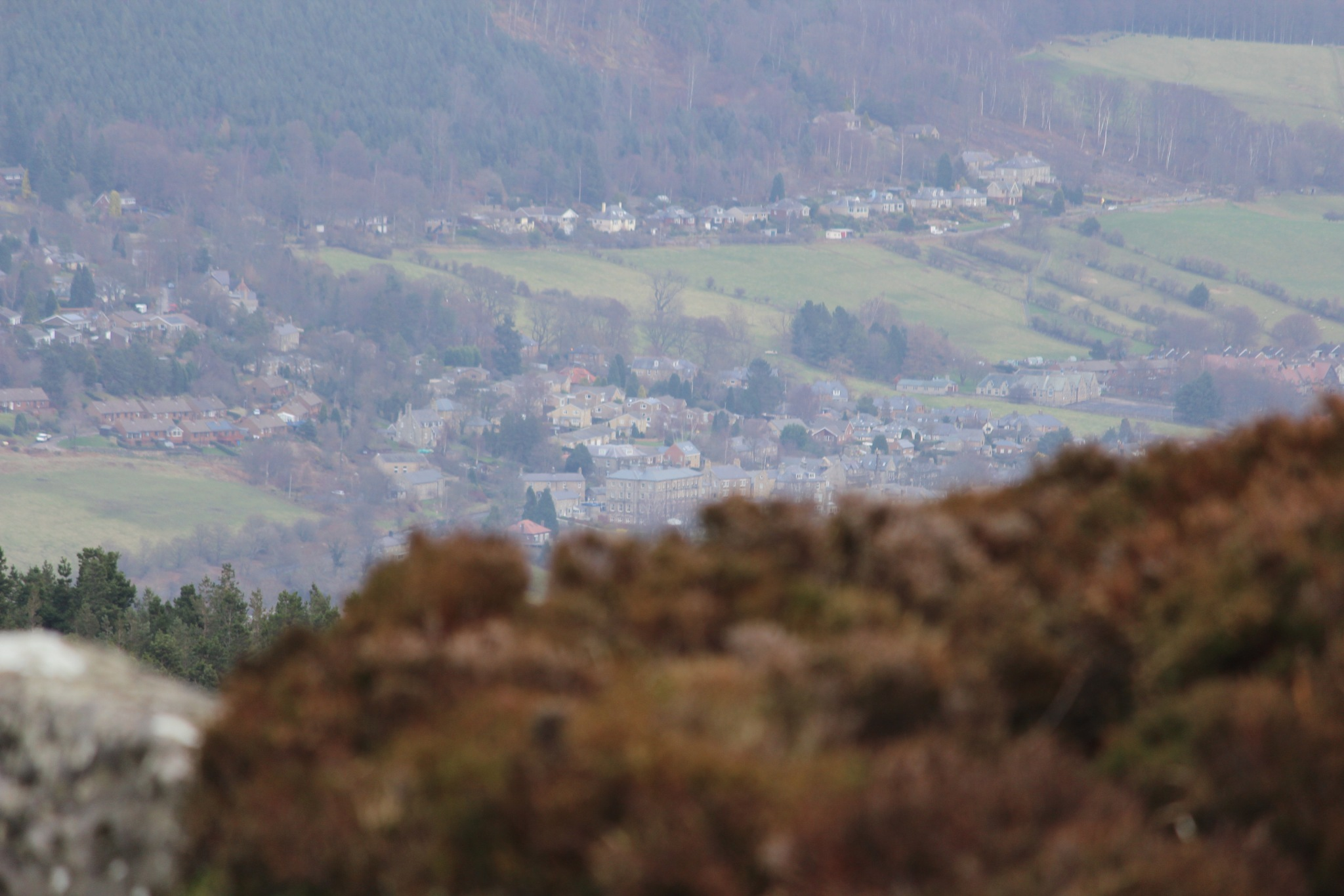 Rothbury by Craig Neve