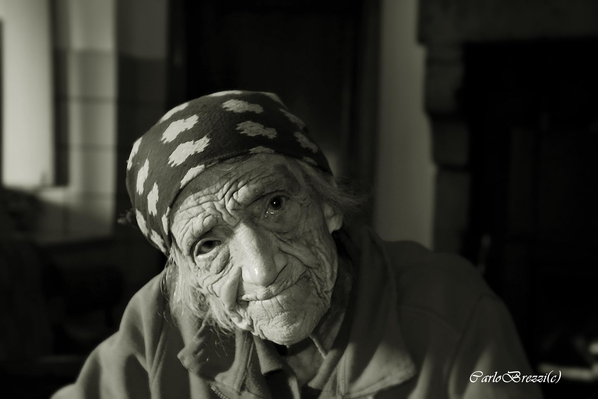 101 years by Carlo Brezzi