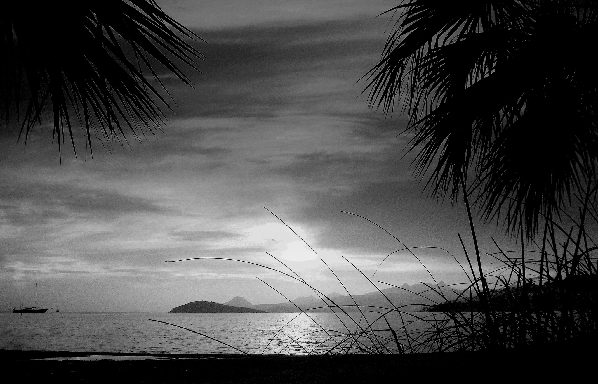 SPECIAL BITEZ SUNSET, B&W by Akin Saner