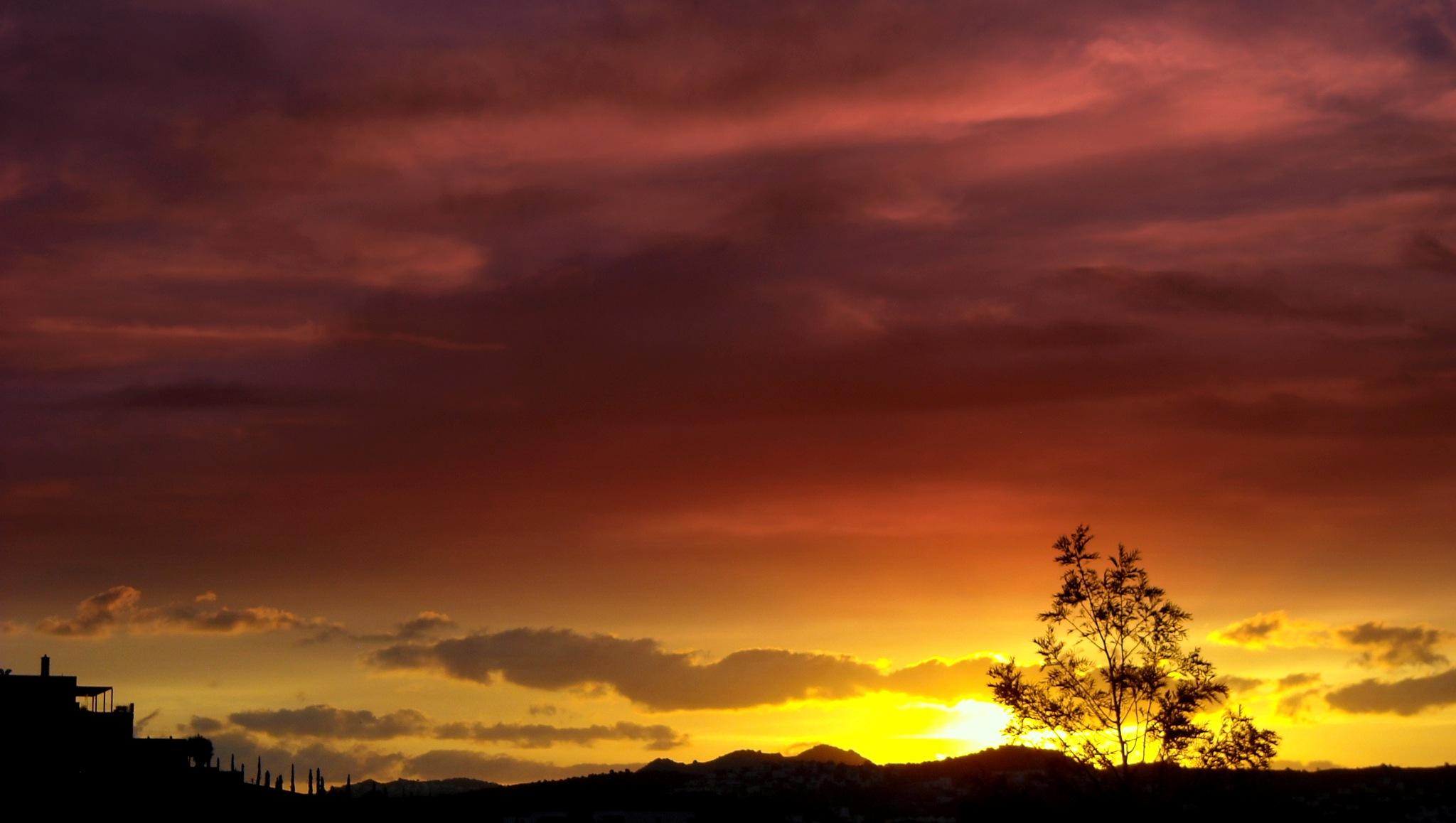 FORGOTTEN SUNSETS 129 by Akin Saner
