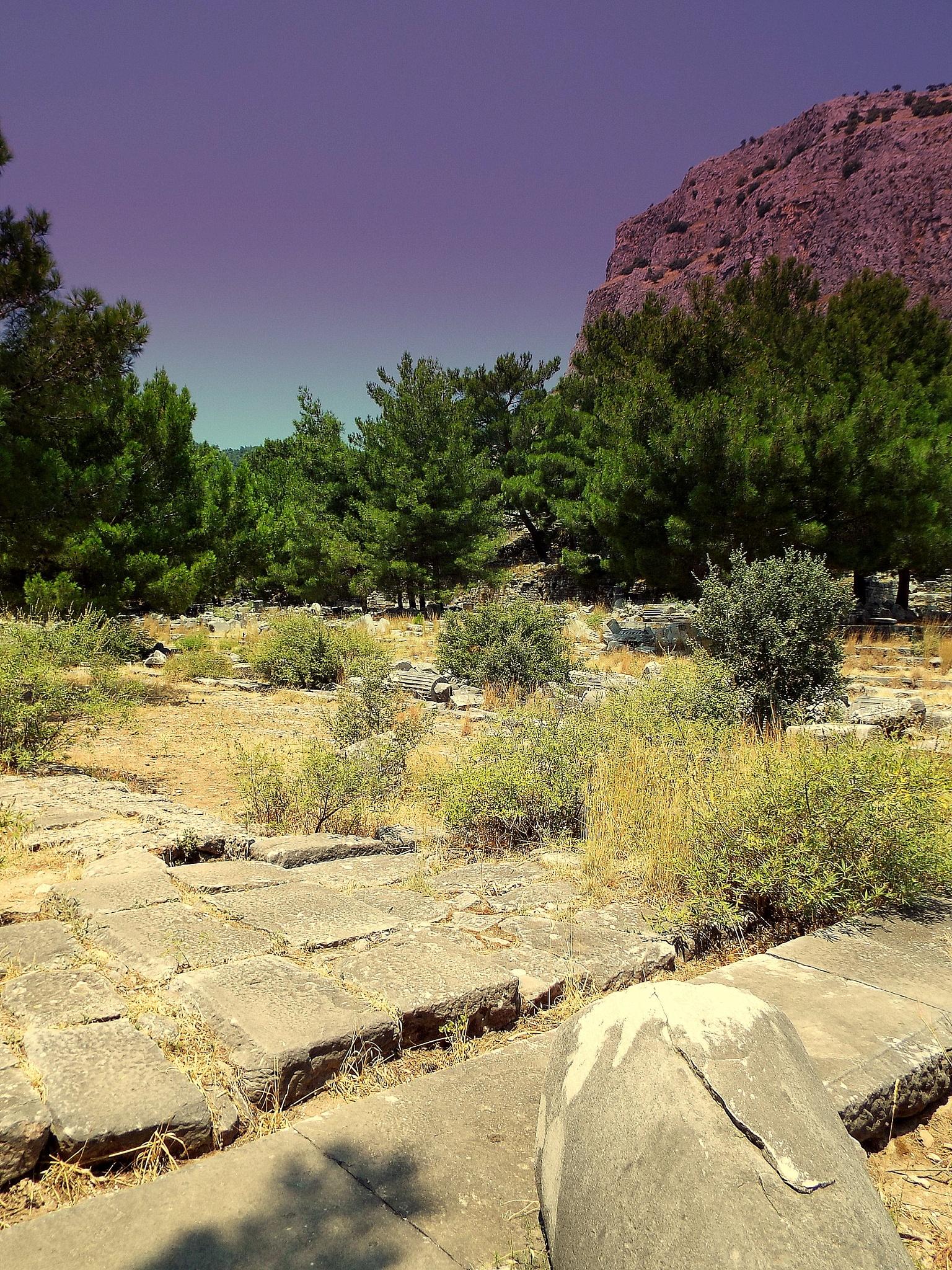 Photo in Landscape #priene ancient city #soke #aydin #turkey