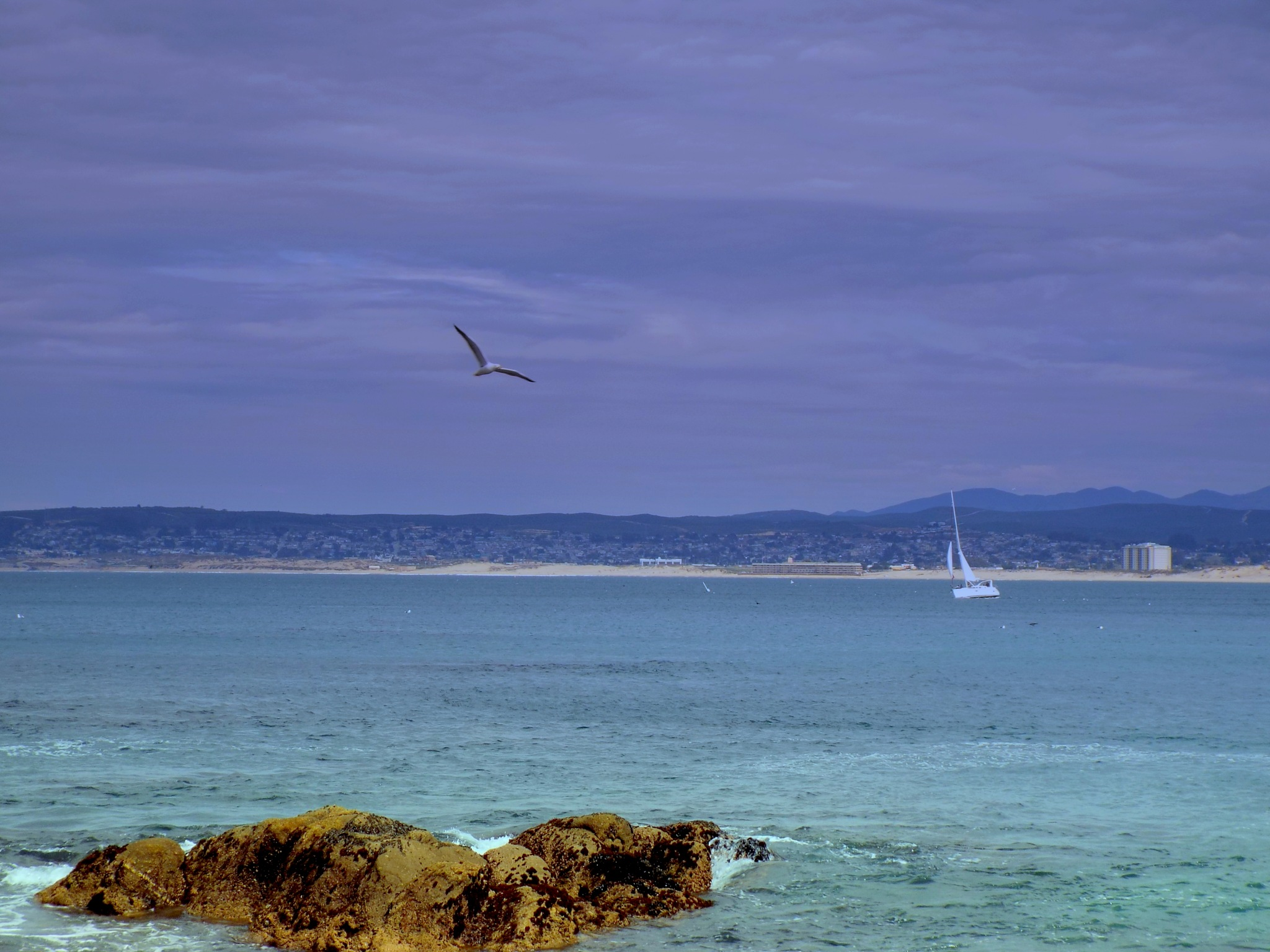 A VIEW FROM MONTEREY BAY. CALIFORNIA by Akin Saner