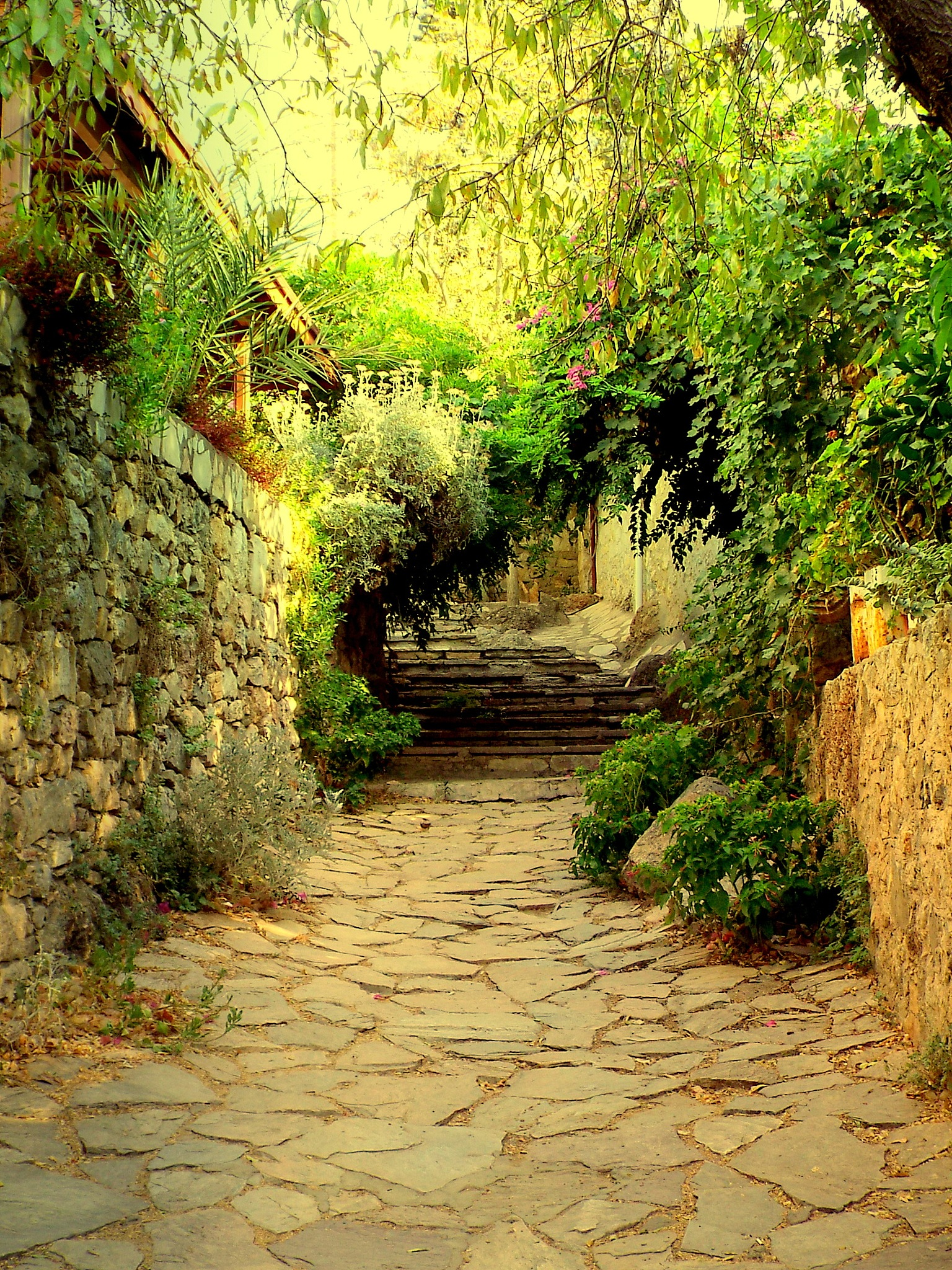 VIEW OF A BEAUTIFUL STREET, OLD DATCA by Akin Saner