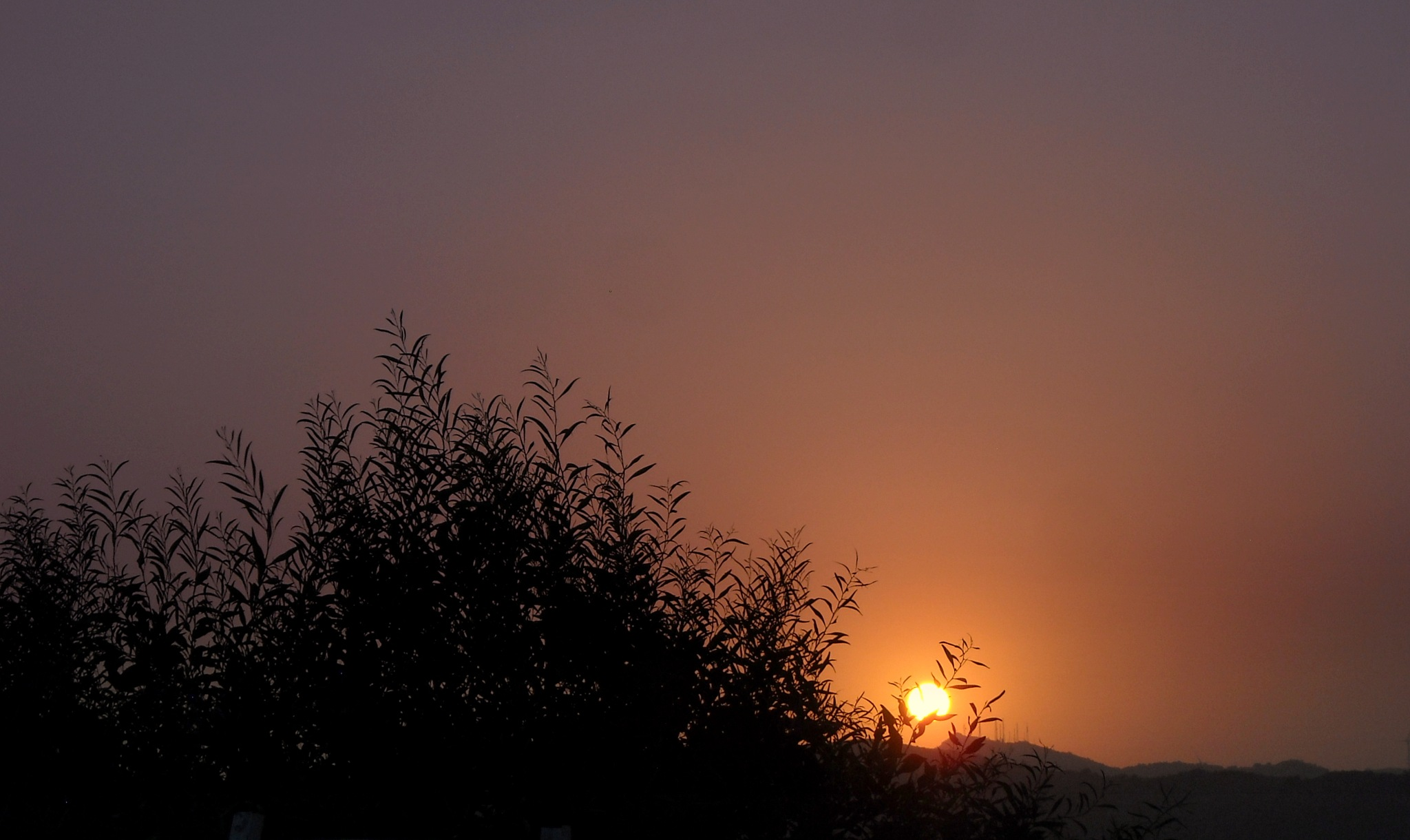 GOOD NIGHT FROM BODRUM 585, TONIGHT'S SUNSET by Akin Saner