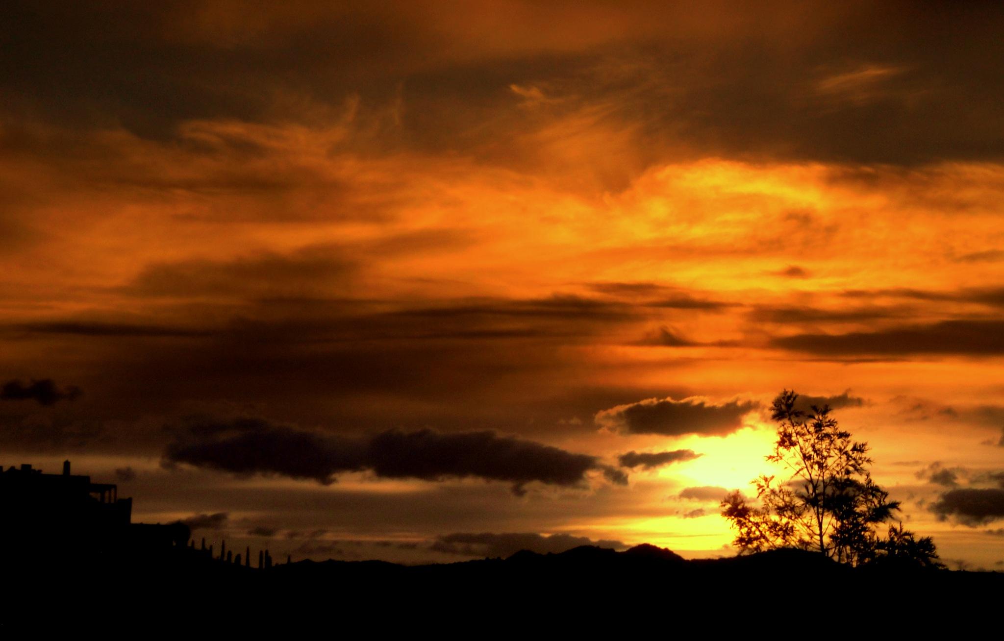 FORGOTTEN SUNSETS 108 by Akin Saner