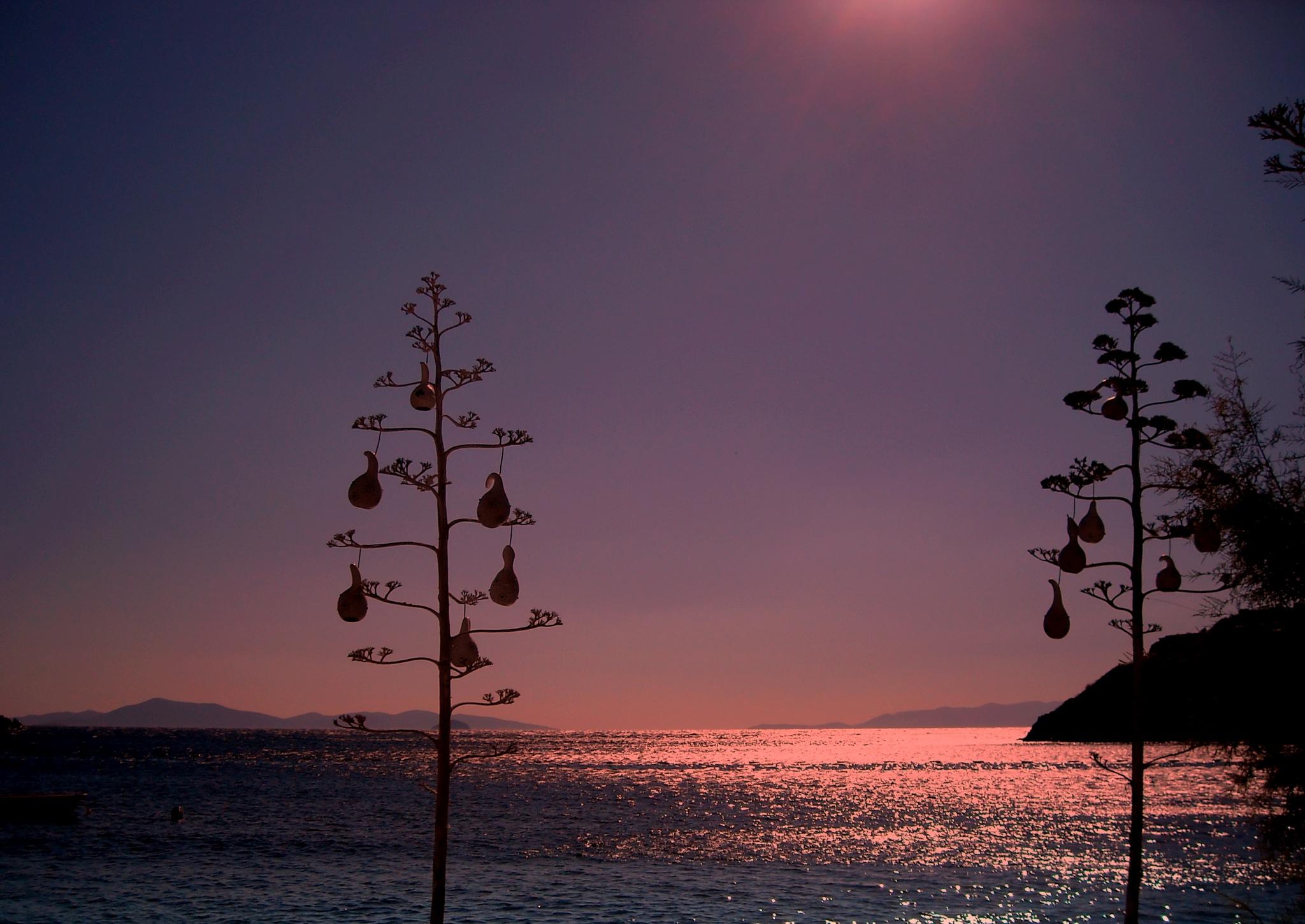 GUMUSLUK BEACH  by Akin Saner