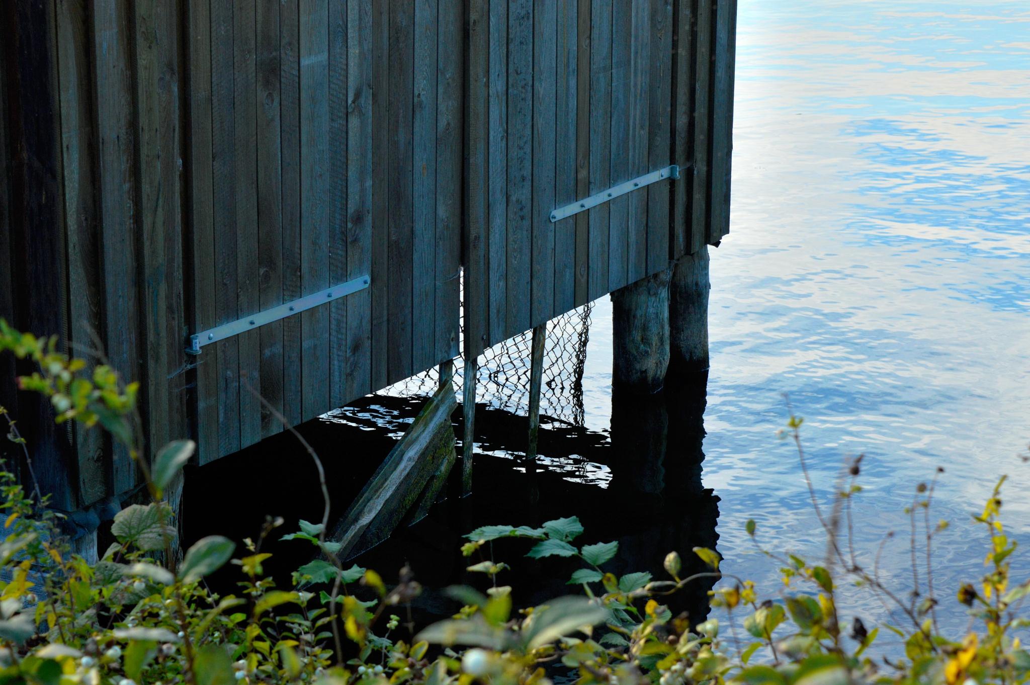 Fishing Net by Diino