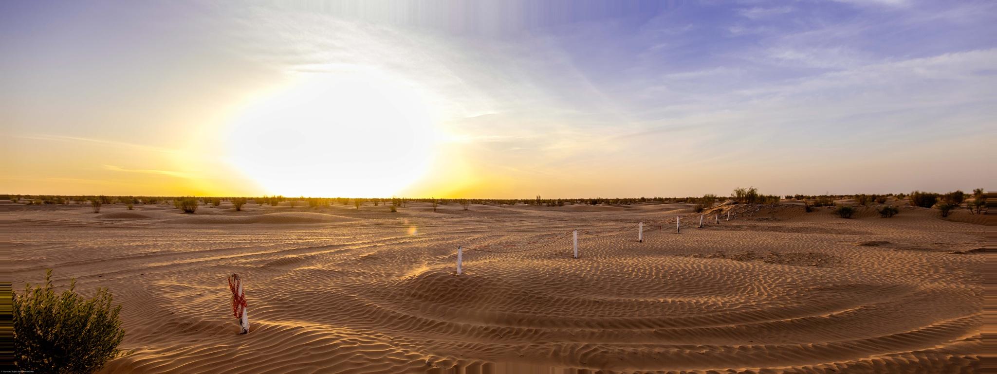 The Gate of Sahara by dadadamomomo