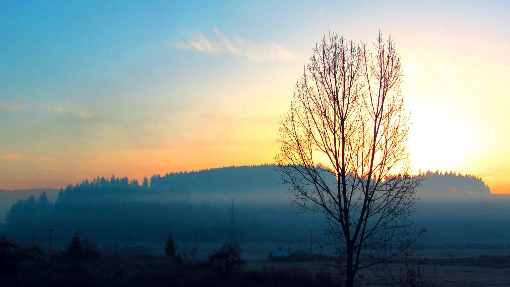 mist by dundacska