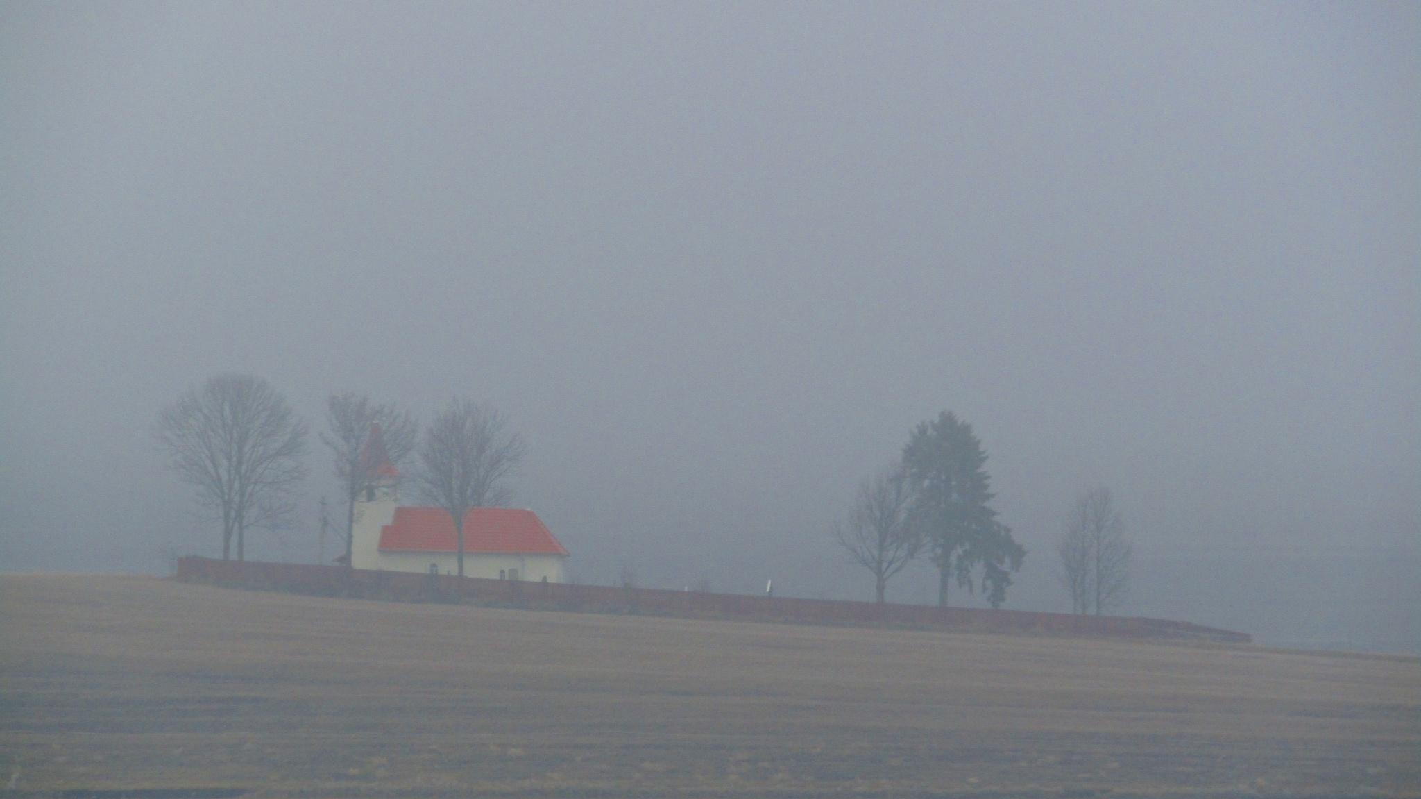 foggy by dundacska