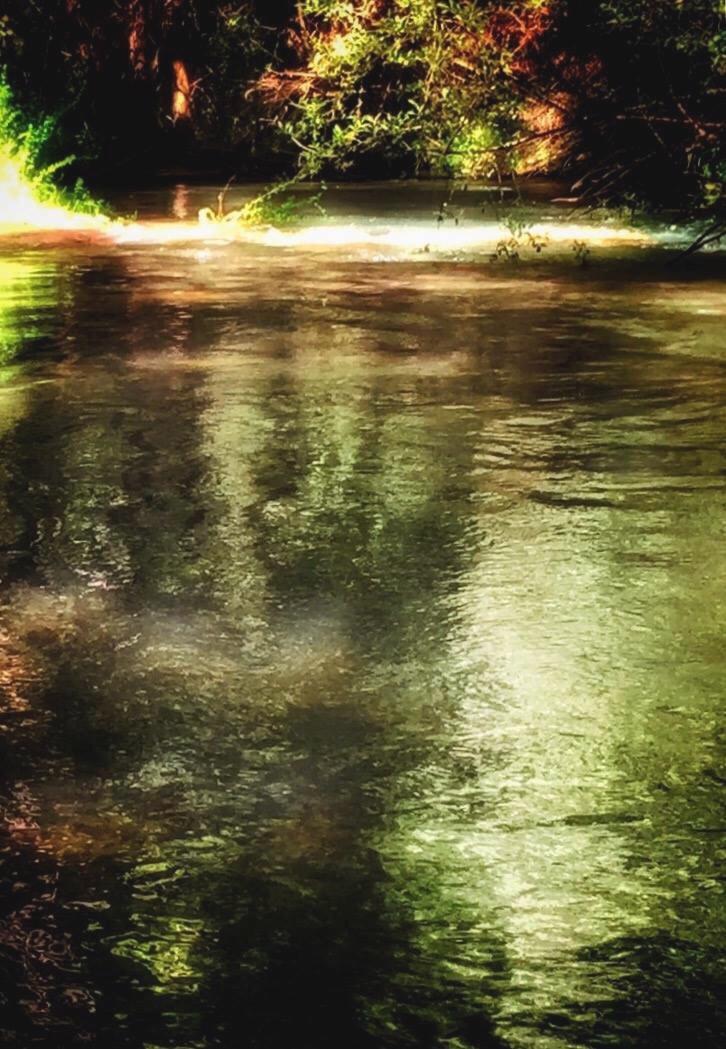 Misterios del rio. by Marinela