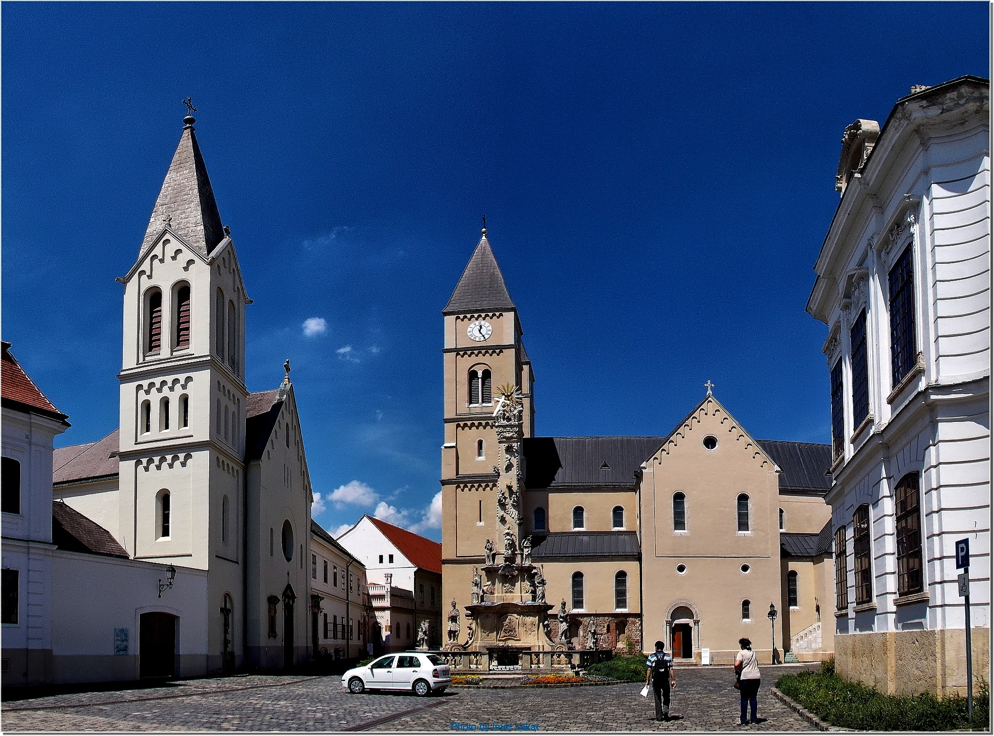 Trinity statue and St. Michael's Cathedral Veszprém by Imre Lakat