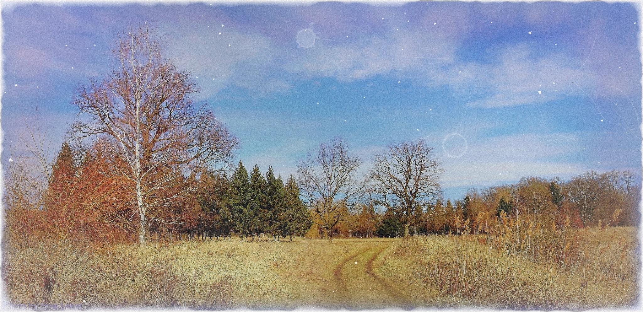 Landscape near Lenti city by Imre Lakat