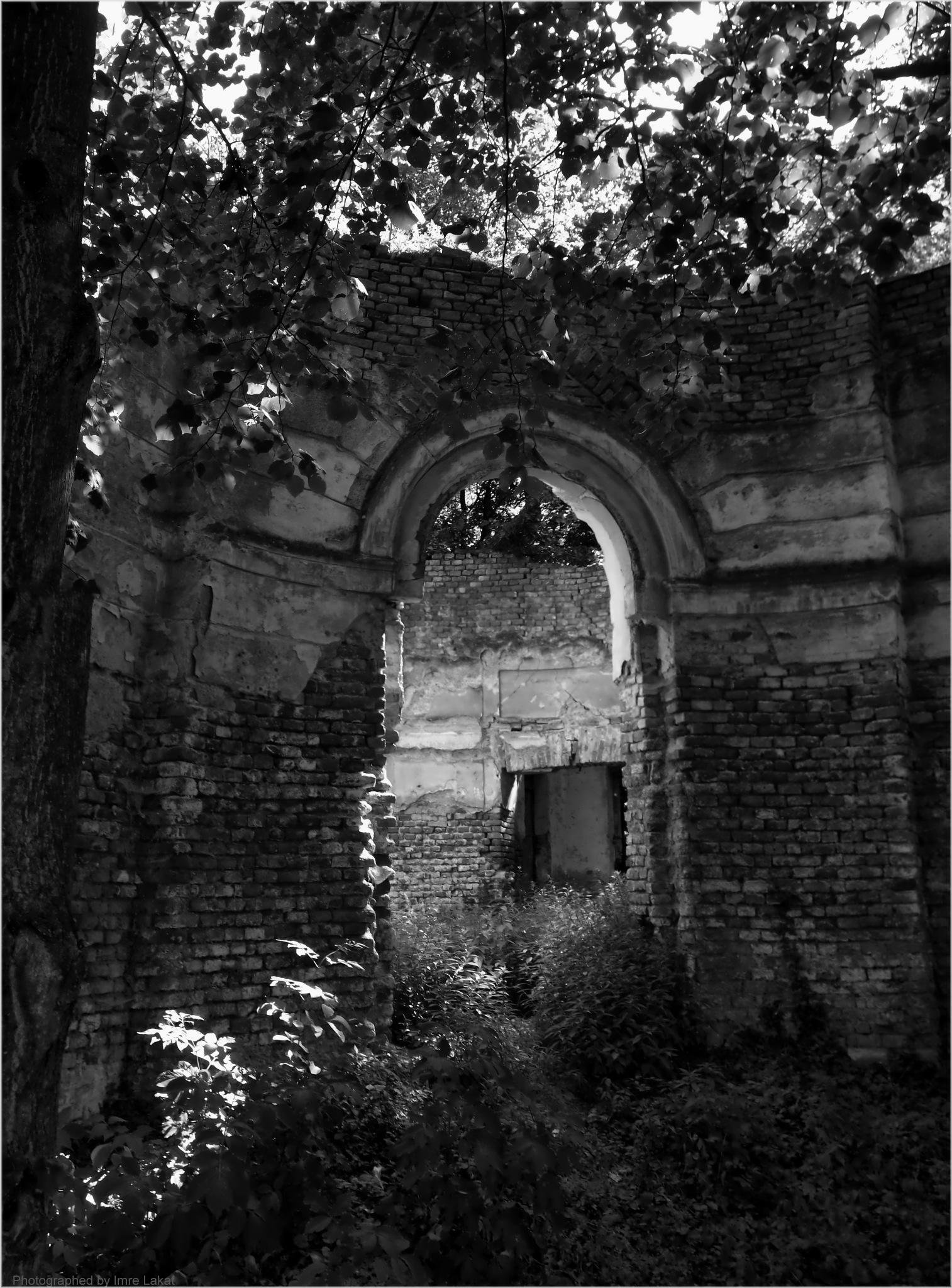 Ruin castle park of Laxenburg by Imre Lakat