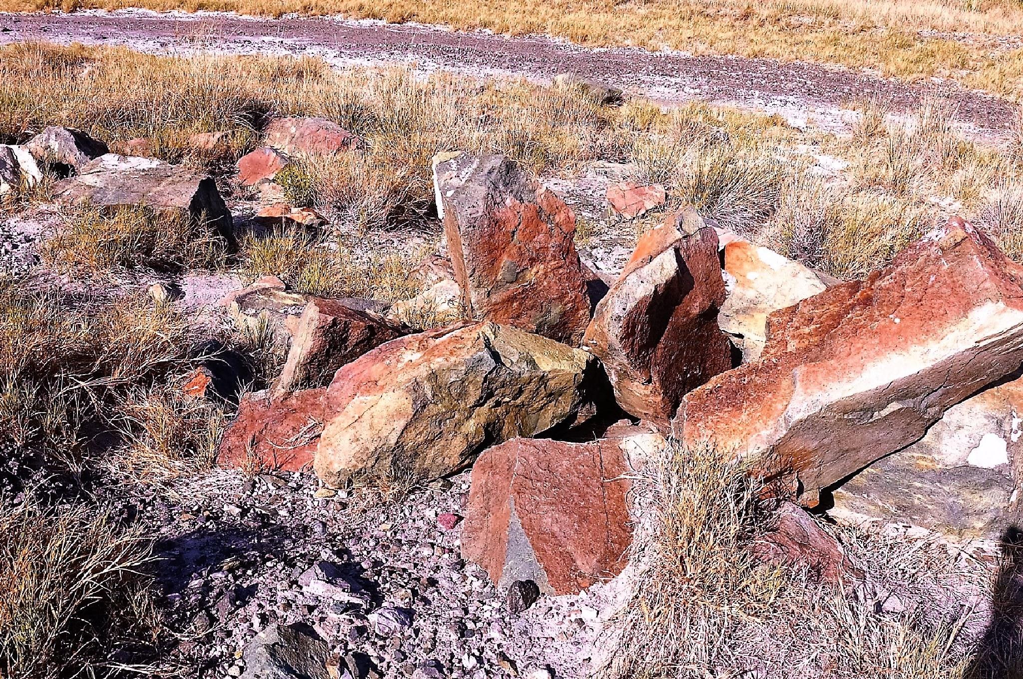 "Yes Please, I Want My Desert Rocks ""Rare""... by Leonardo Penaranda"