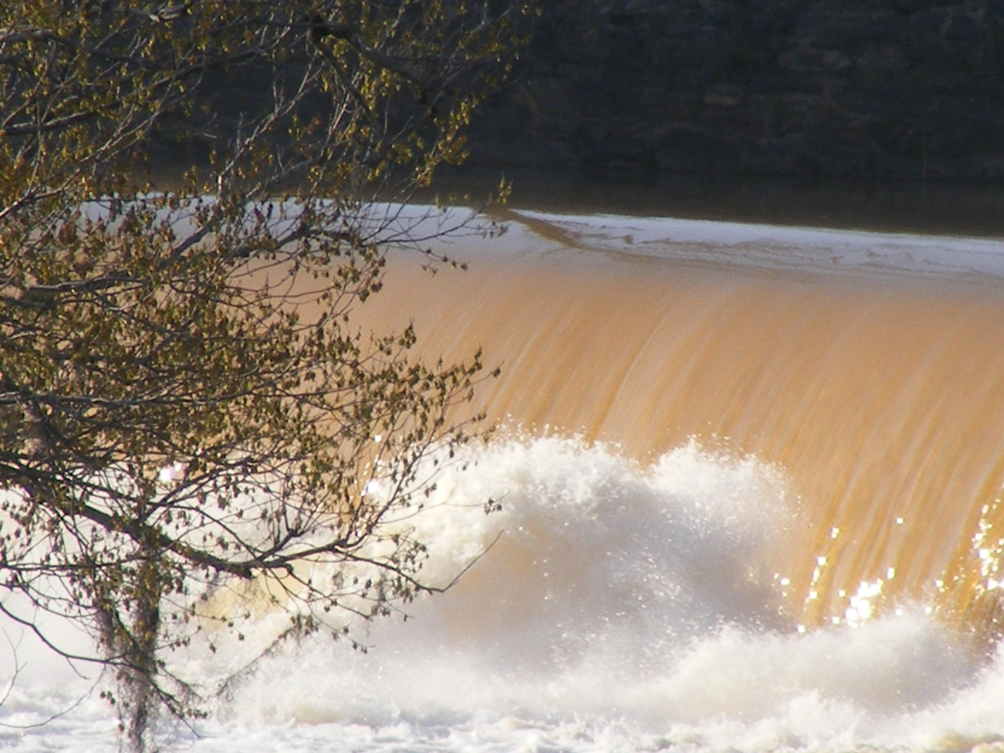 Falling Waters by Alex Ingram