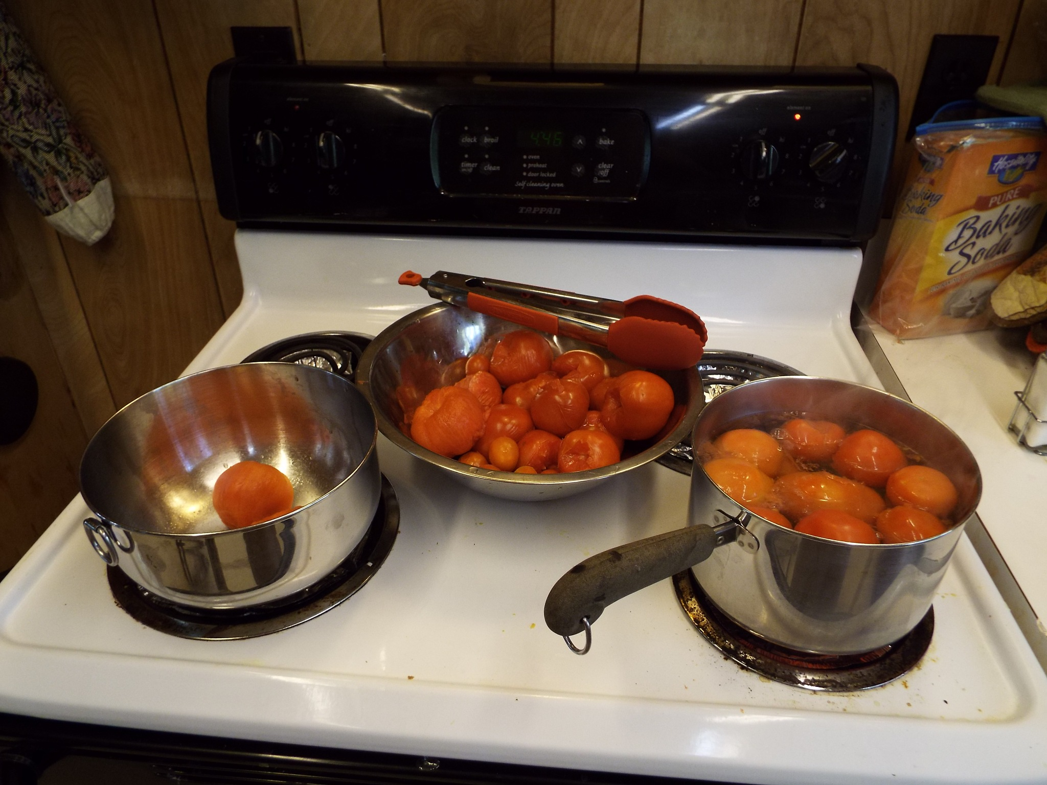 When life gives you tomatos make sauce. by Alex Ingram