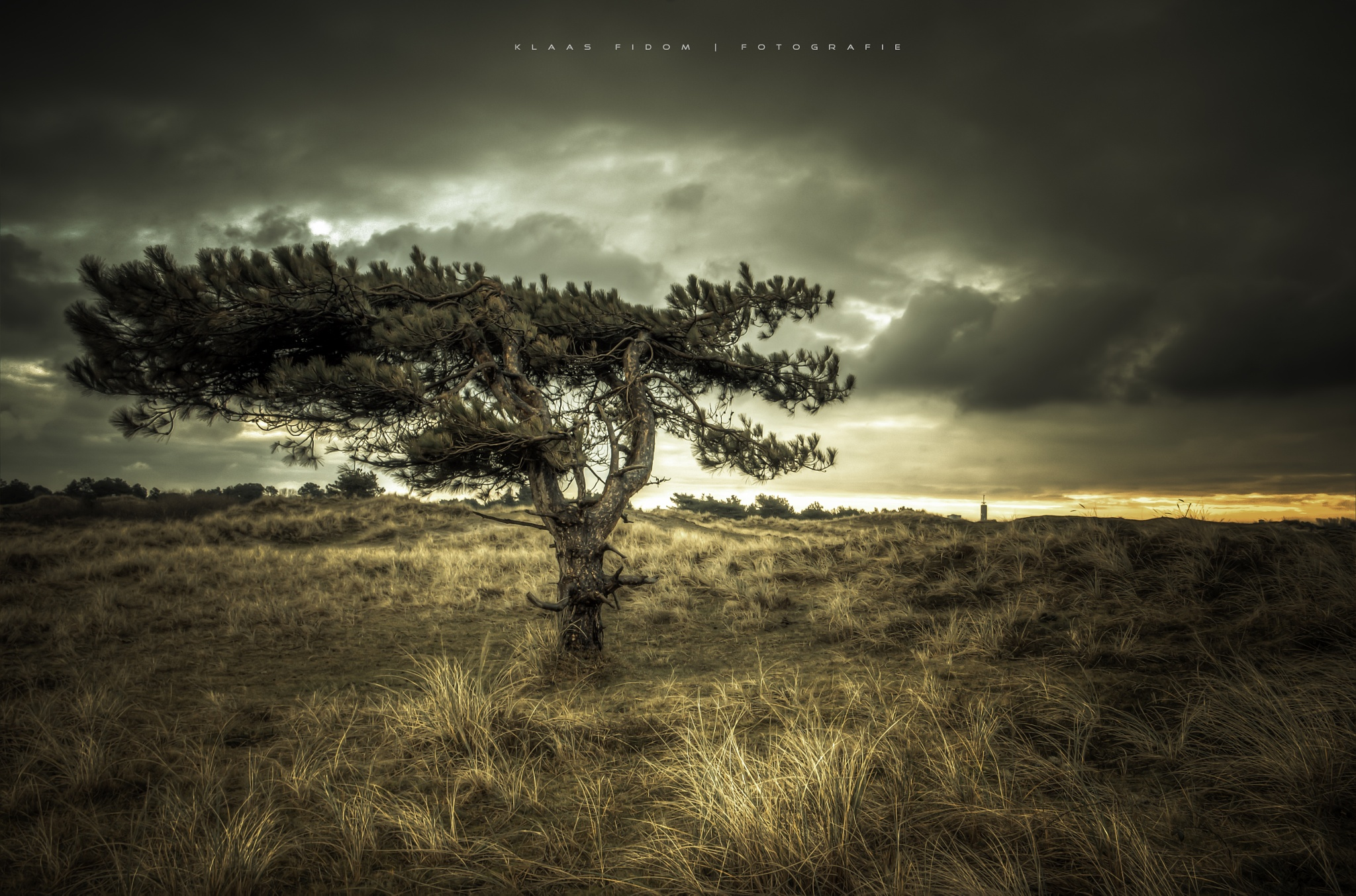 Lonely by KlaasFidom