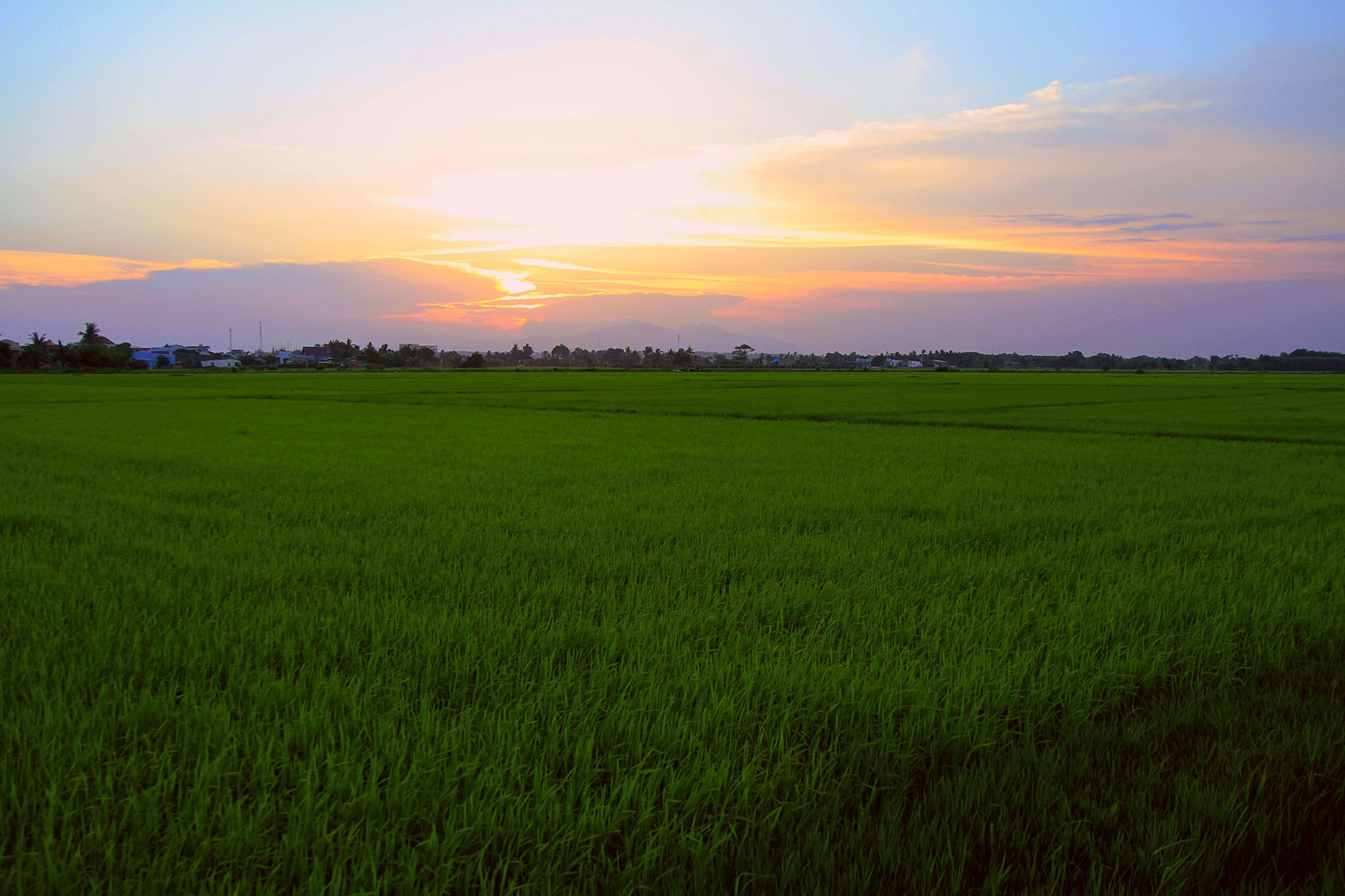 Sunset on the field by binhhtphoto