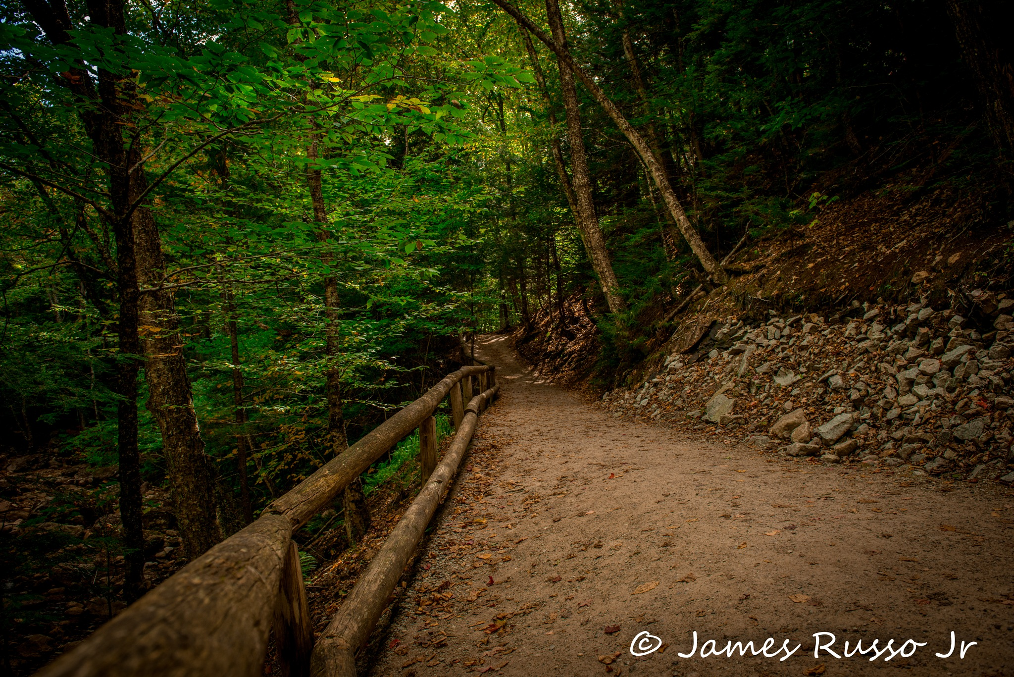 Path by James Russo