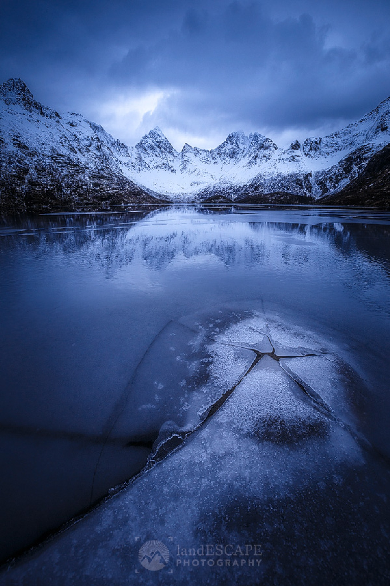 bleu by Jeff Lewis