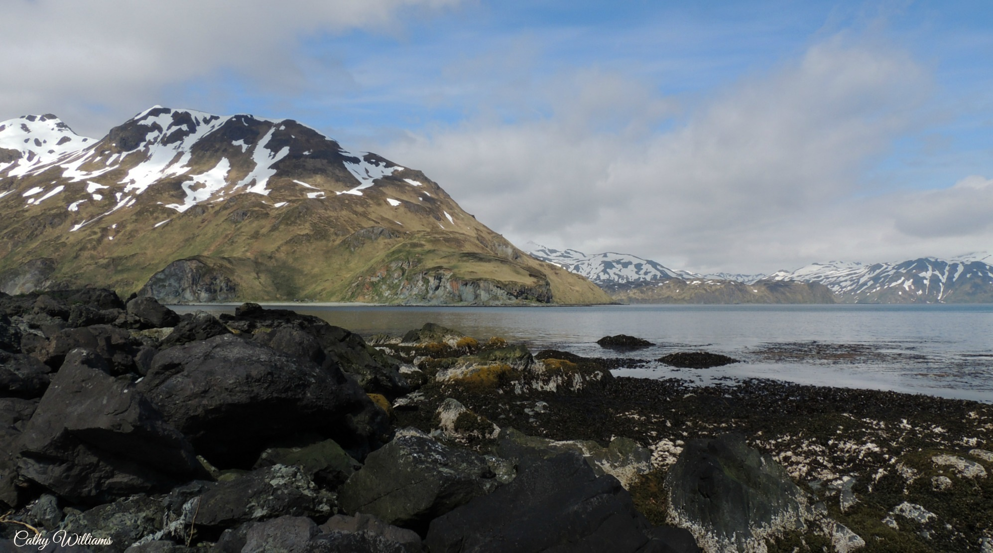 Dutch Harbor Alaska II by catwillo