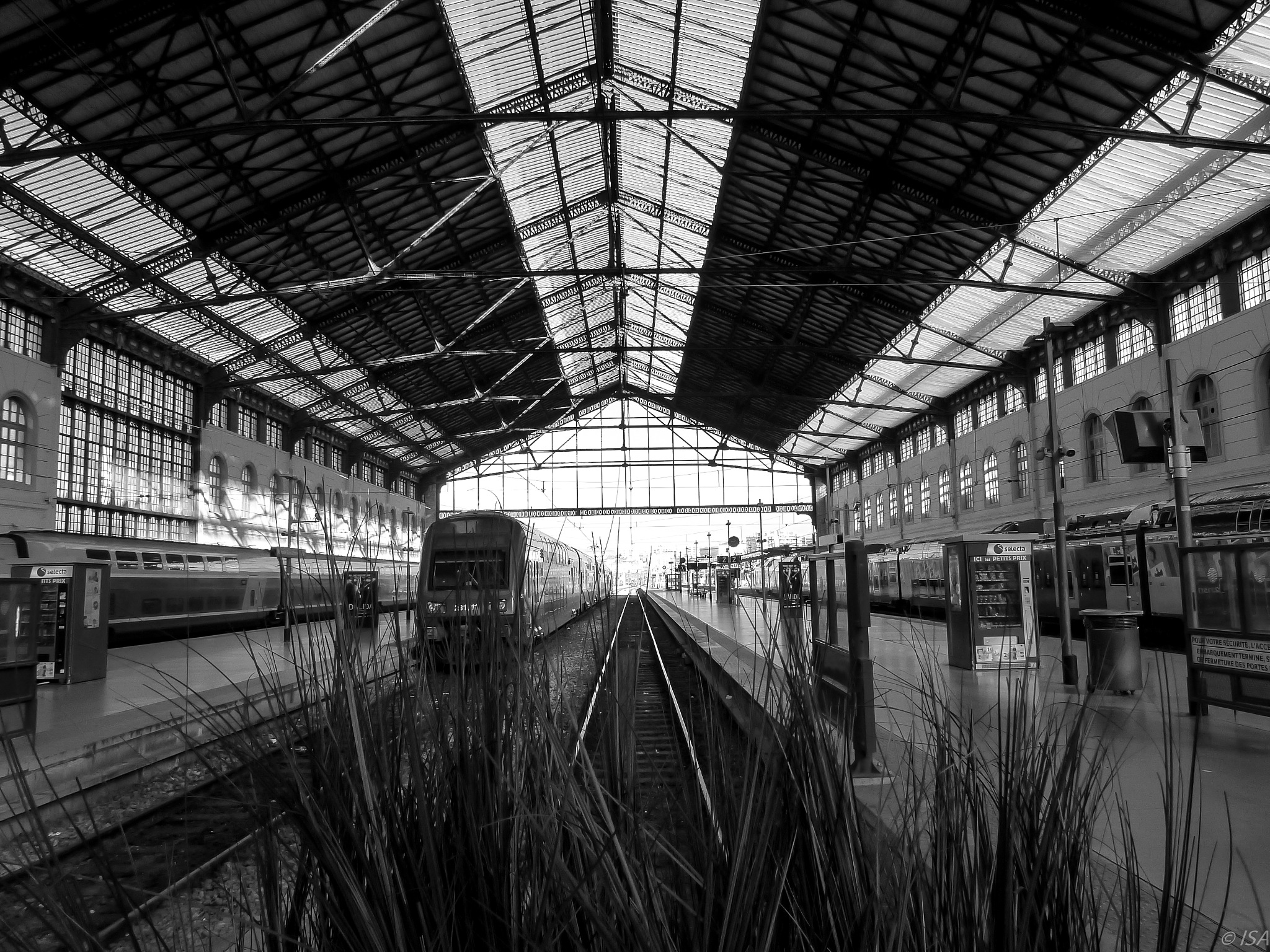 Gare St Charles - Marseille by Aymée Lyrhe
