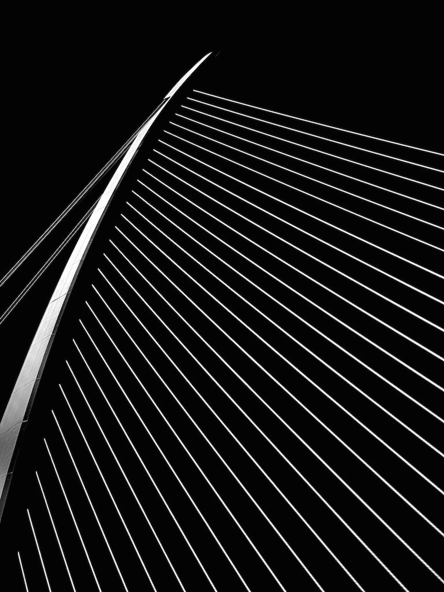 Calatrava Bridge by carlvanassche