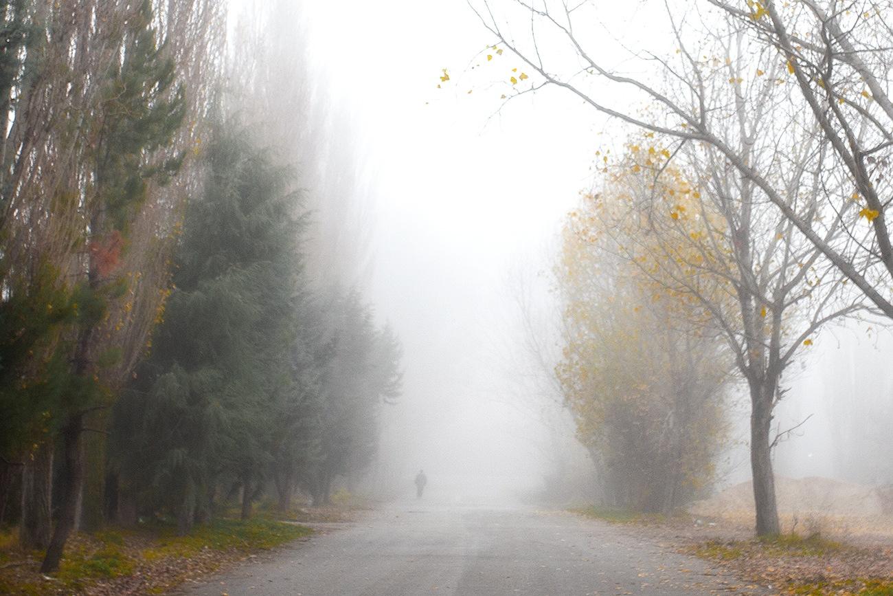 Autumn walk by Christos Lamprianidis