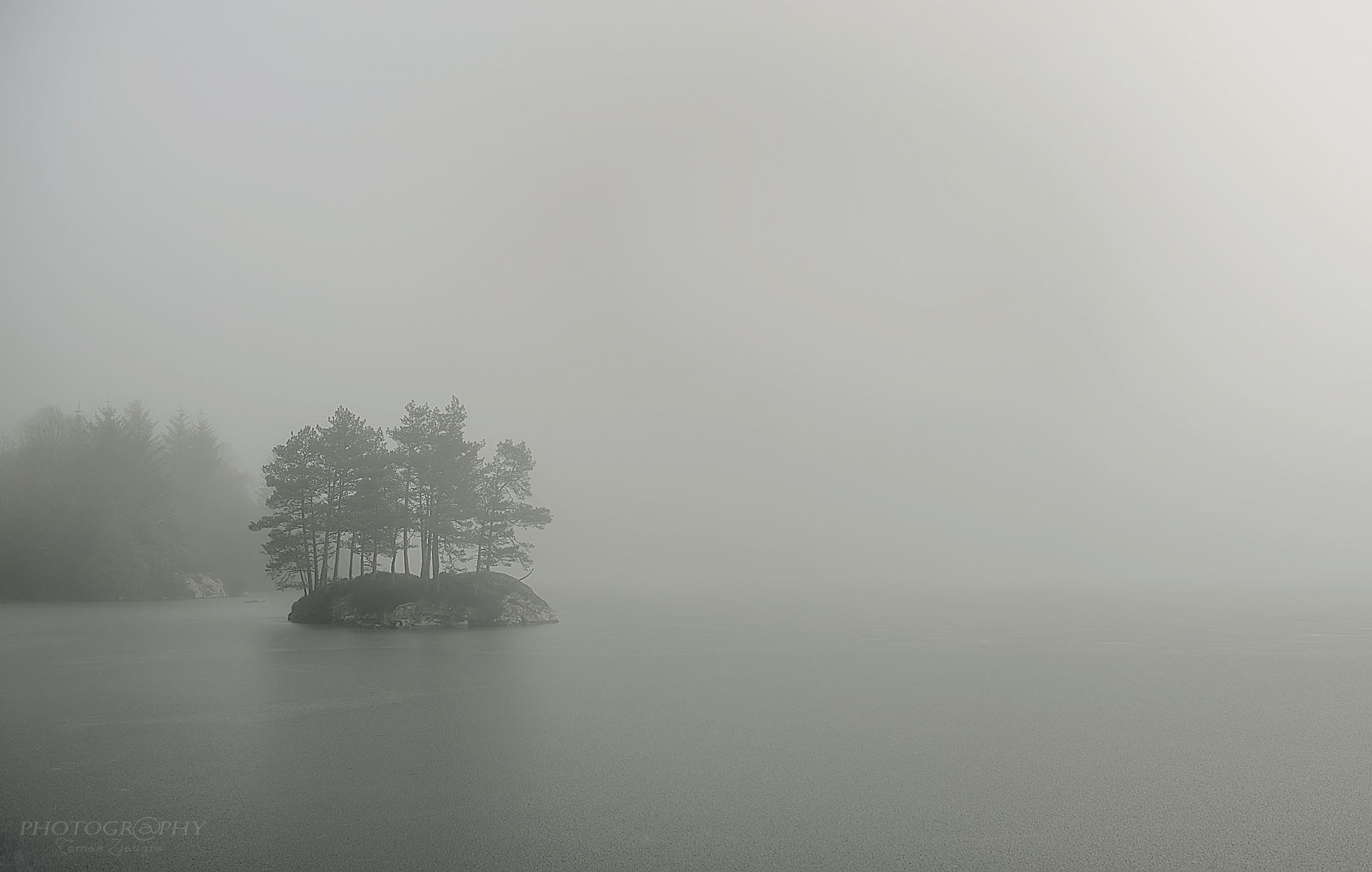 fog on the lake by Tomas Ziaugra