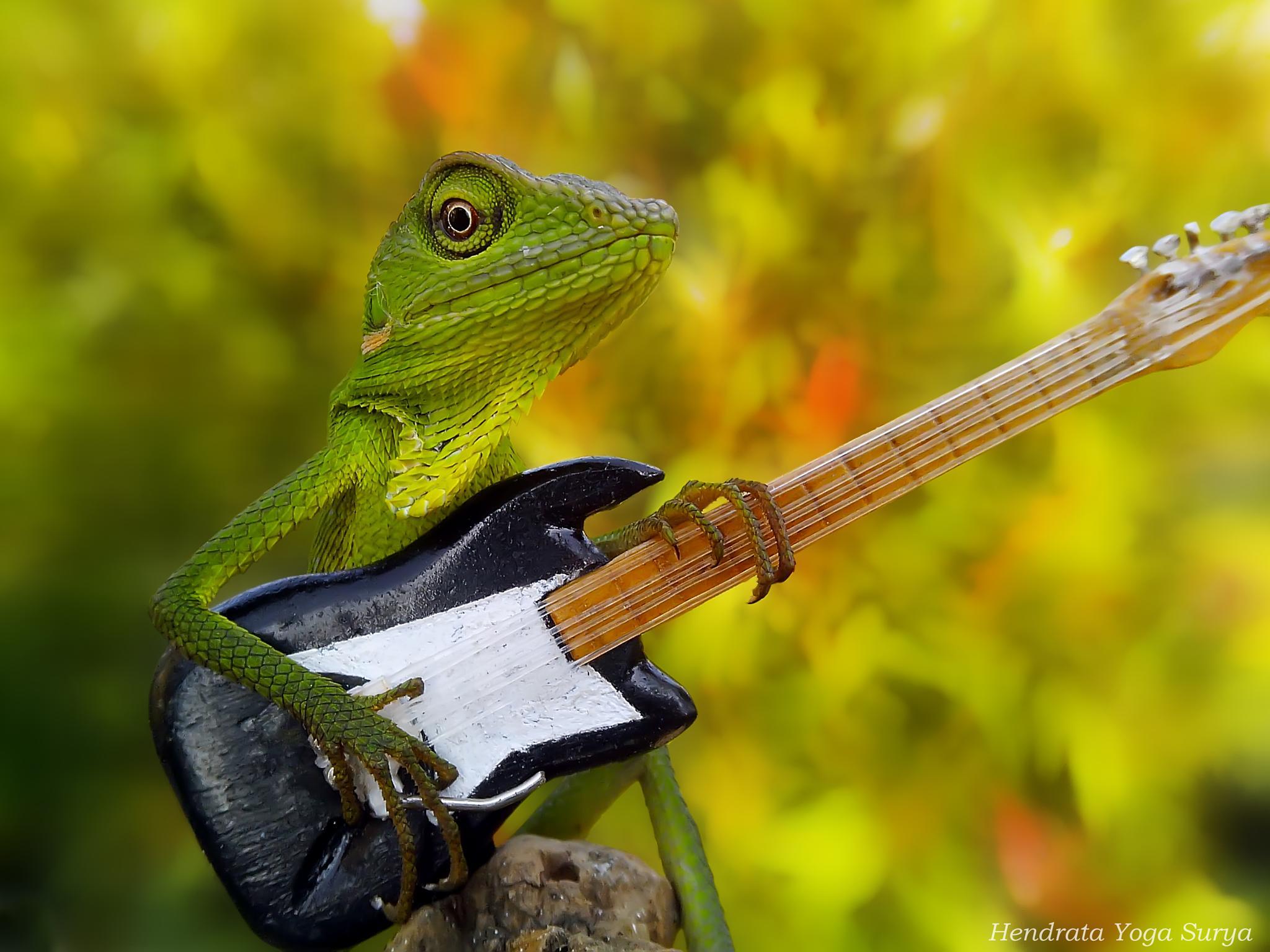 the guitarist by hendrata yoga surya