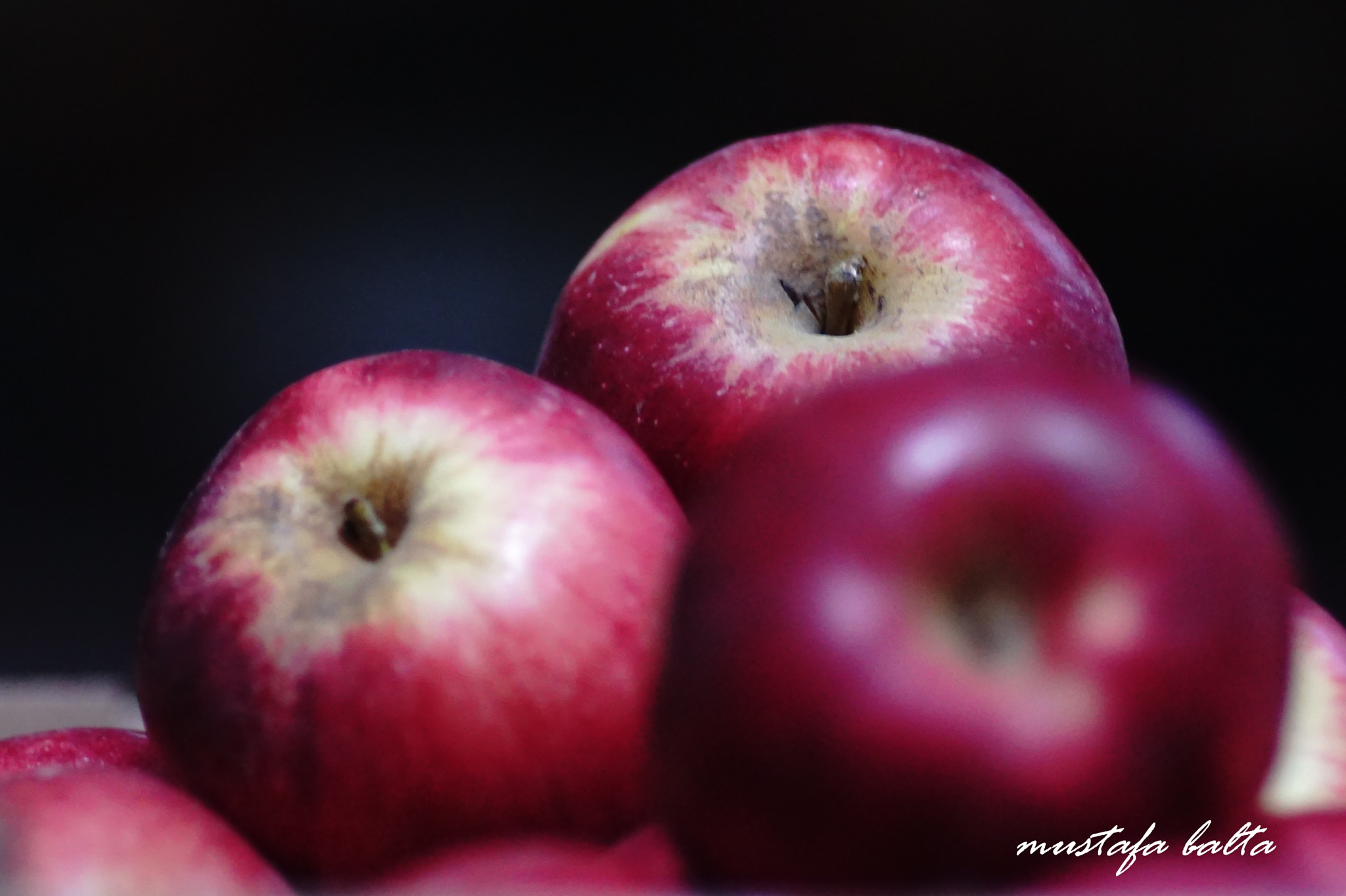An Apple 2  by Mustafa Balta
