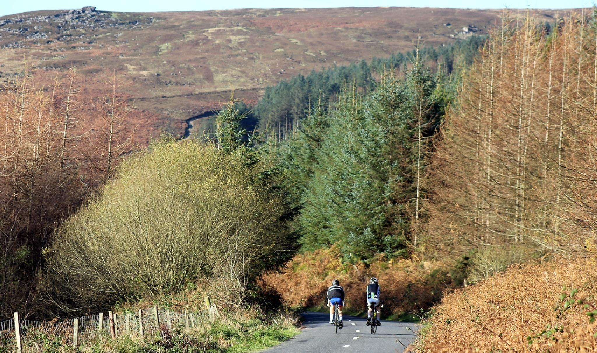Cycling Waterford Autumn Leaves by Dáithí Ó Raghallaigh