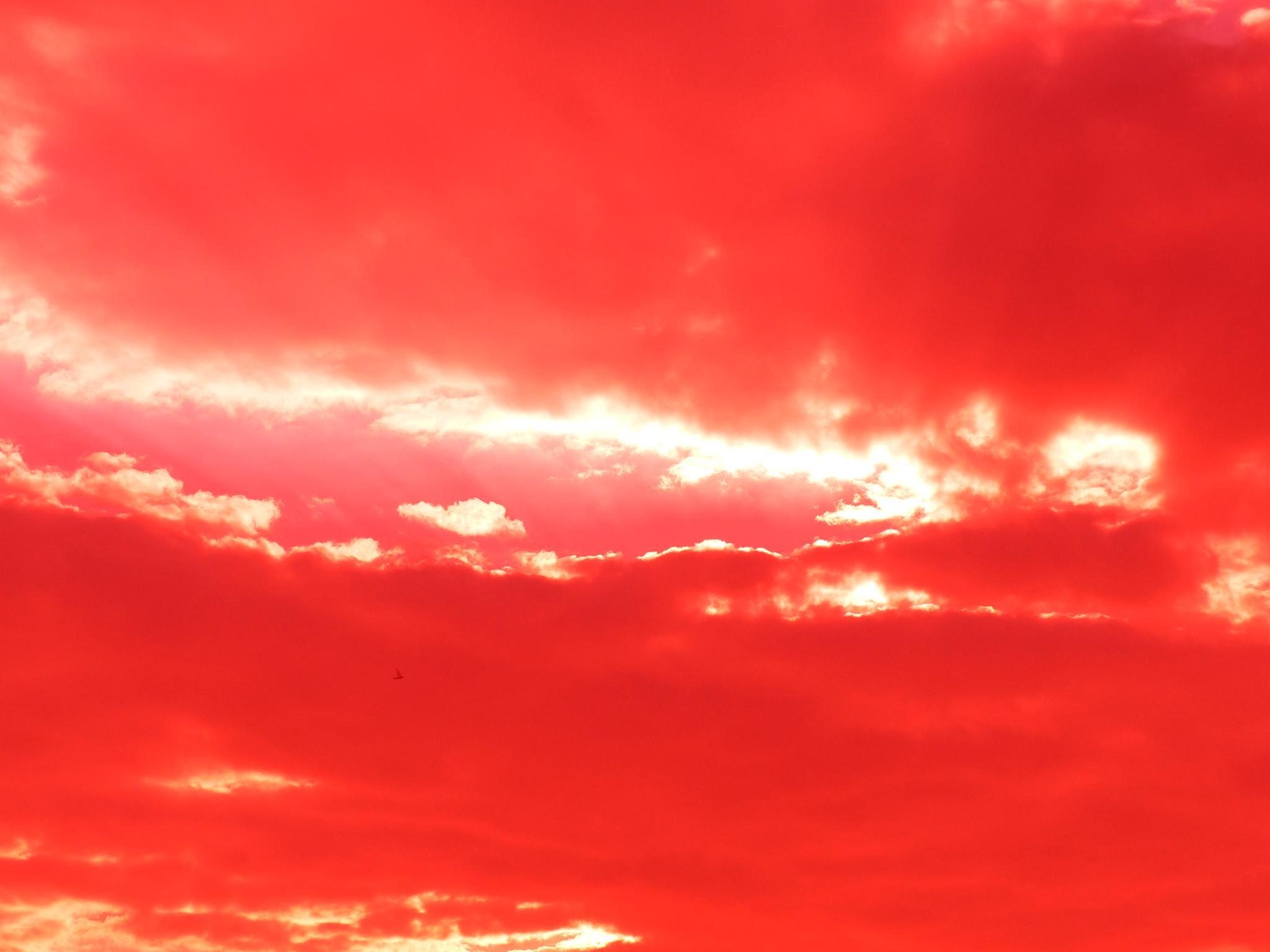Sky, as I see by Dan Khiabani