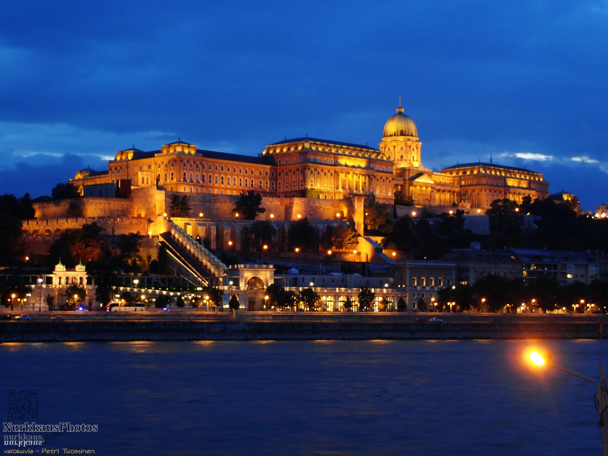 Buda castle by PeepeT