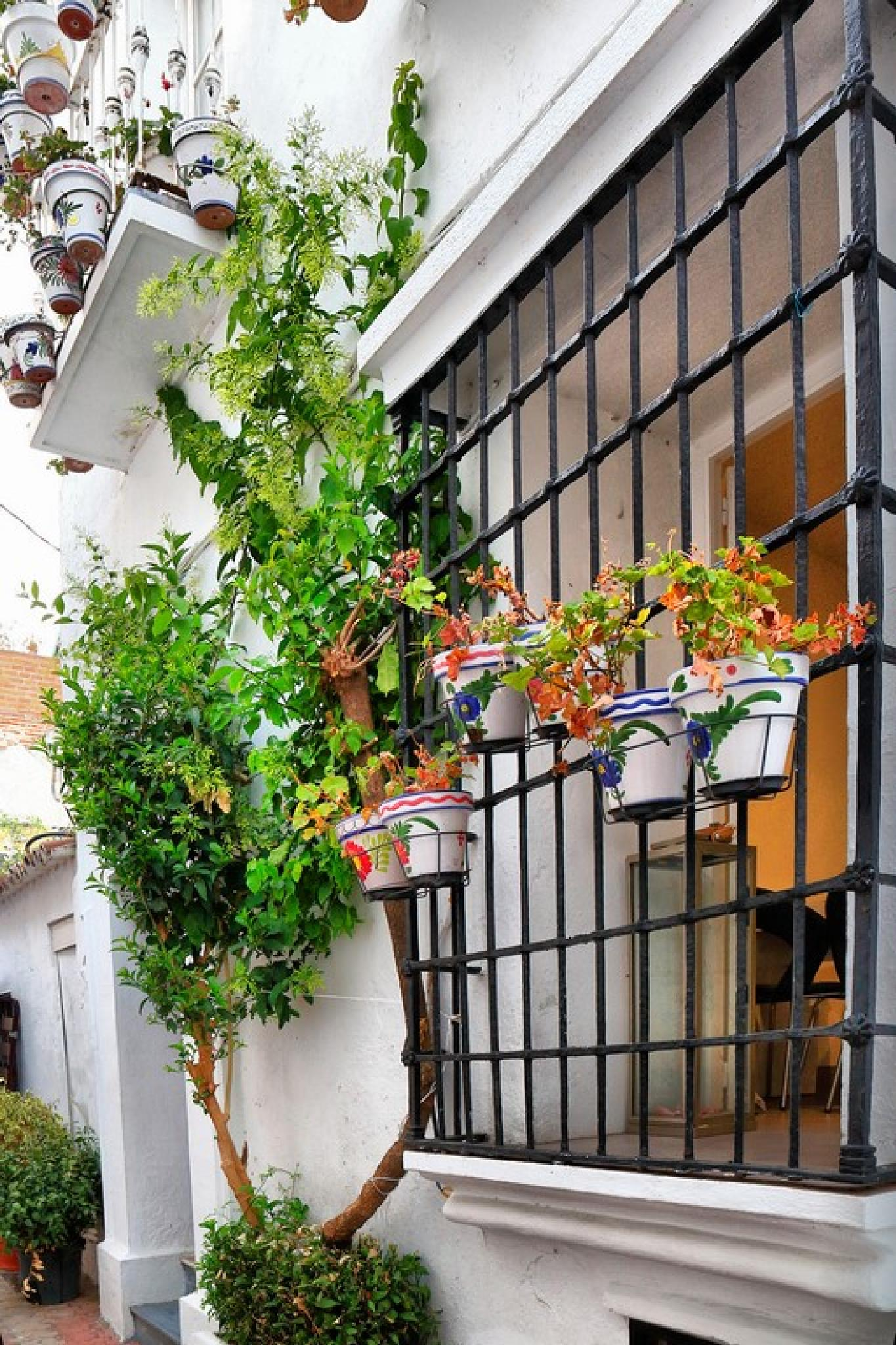 Marbella by julio rubio