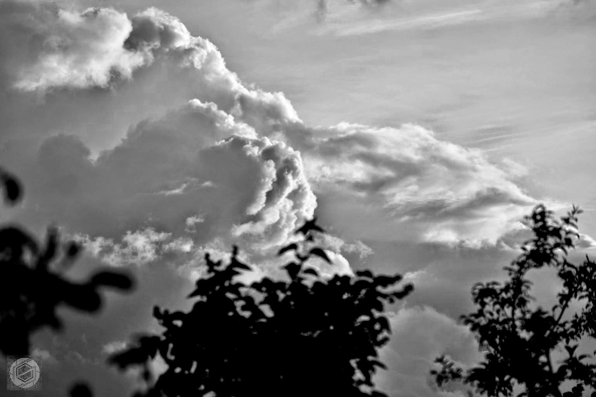 Photo in Nature #cloud #weather