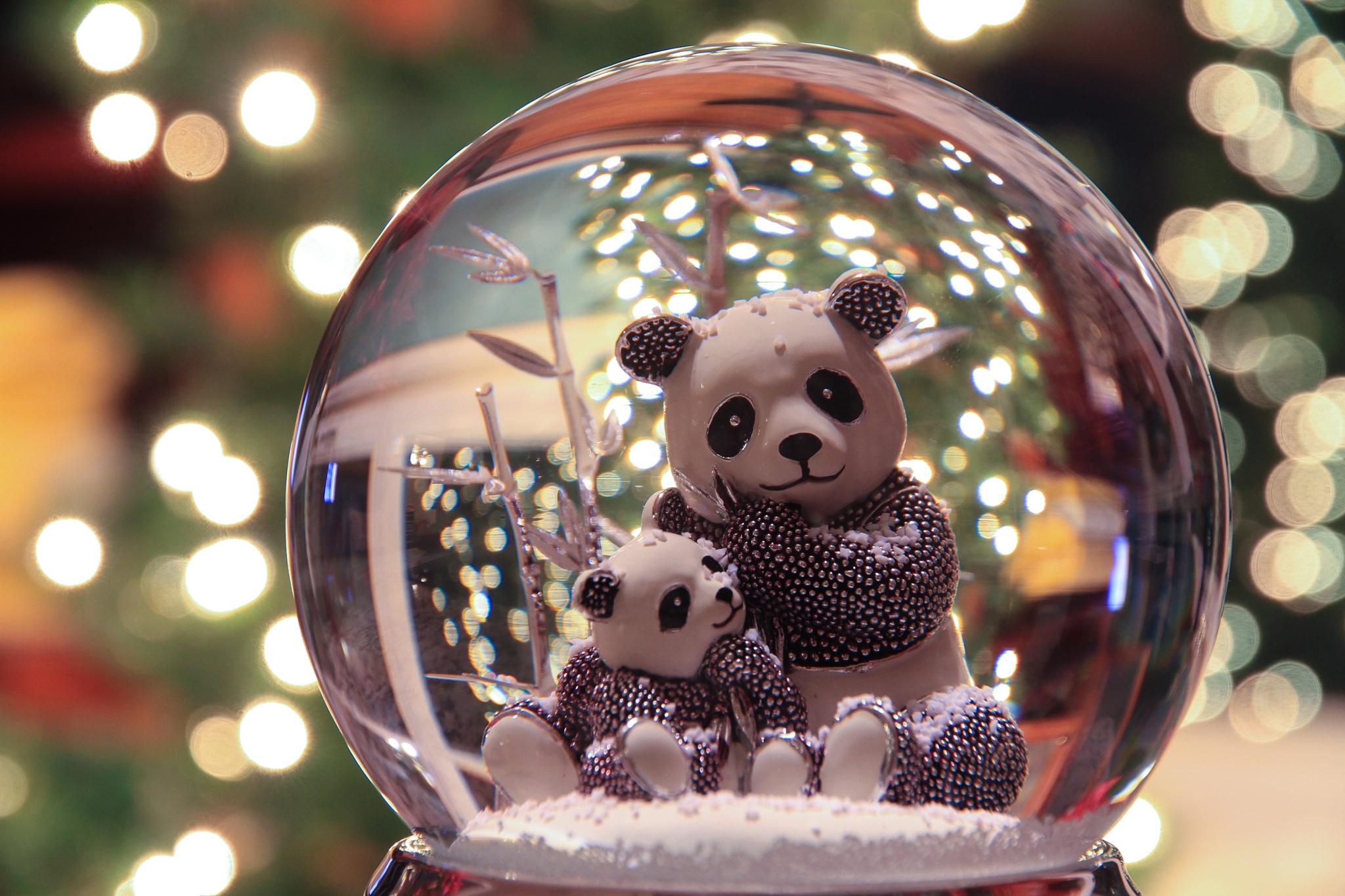 Bokeh Pandas by El Merrifield