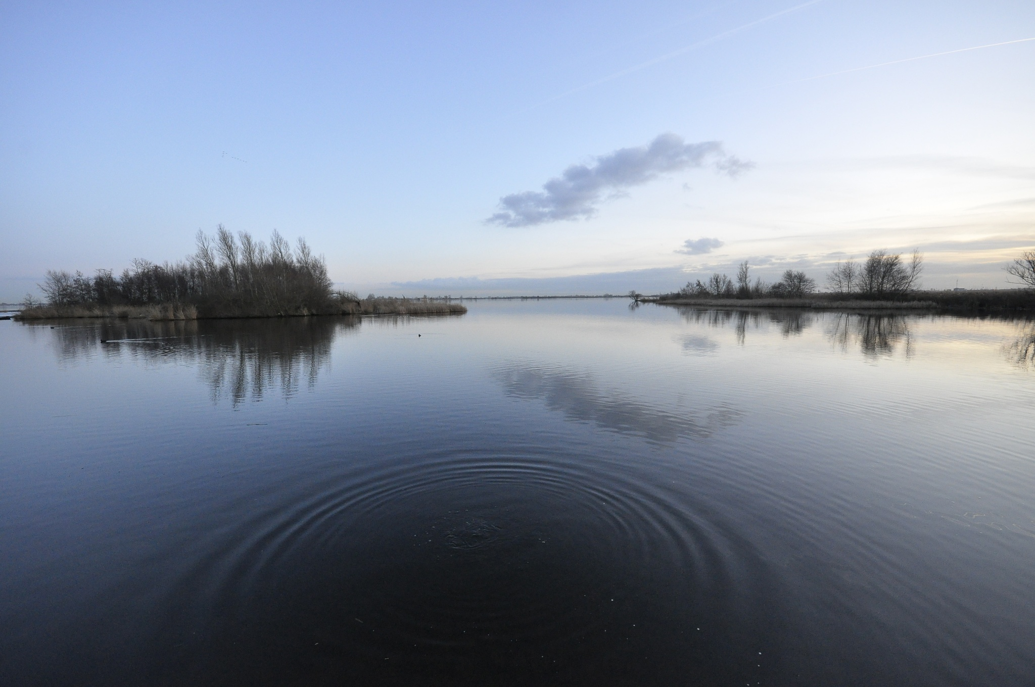 Lakeside by Aperazzo