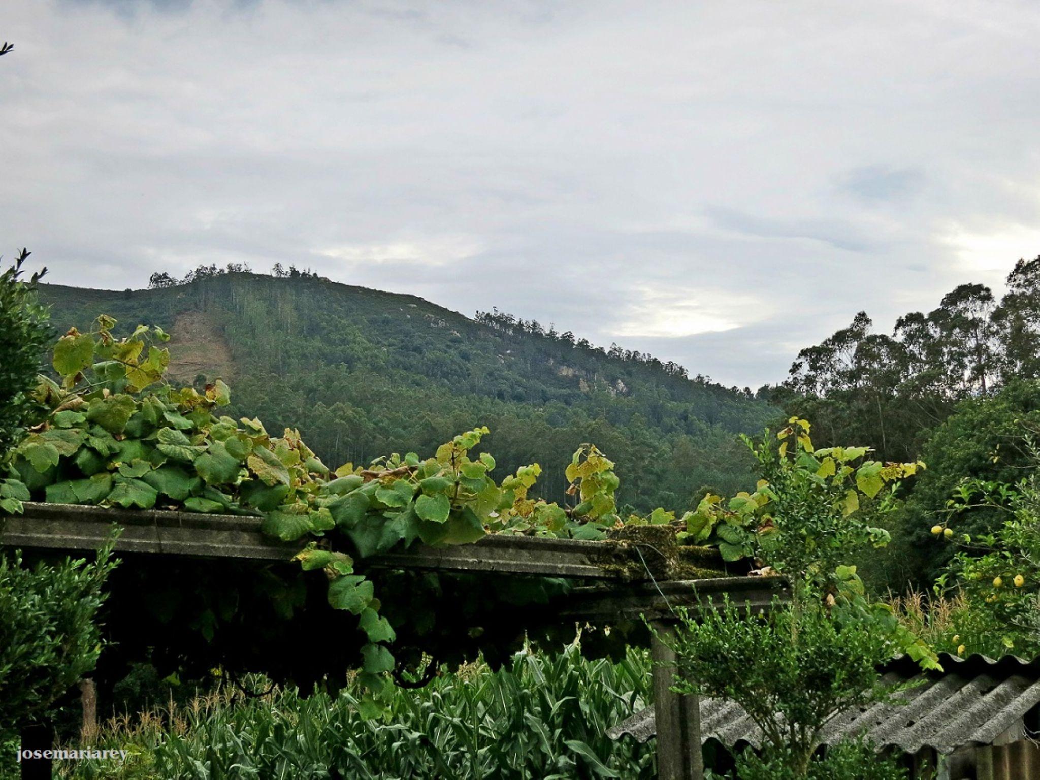 Atardecer en la montaña by josemariareymontes