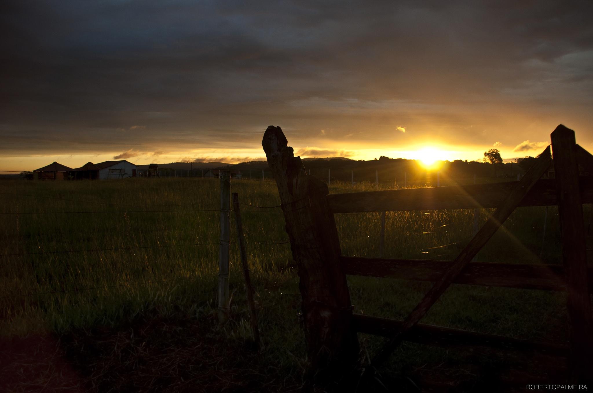 Rural by Palmeira