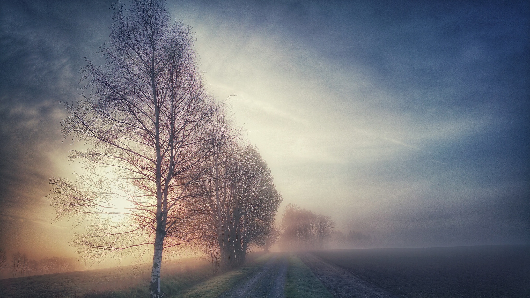 Again....;)....on the way to work by  Jutta